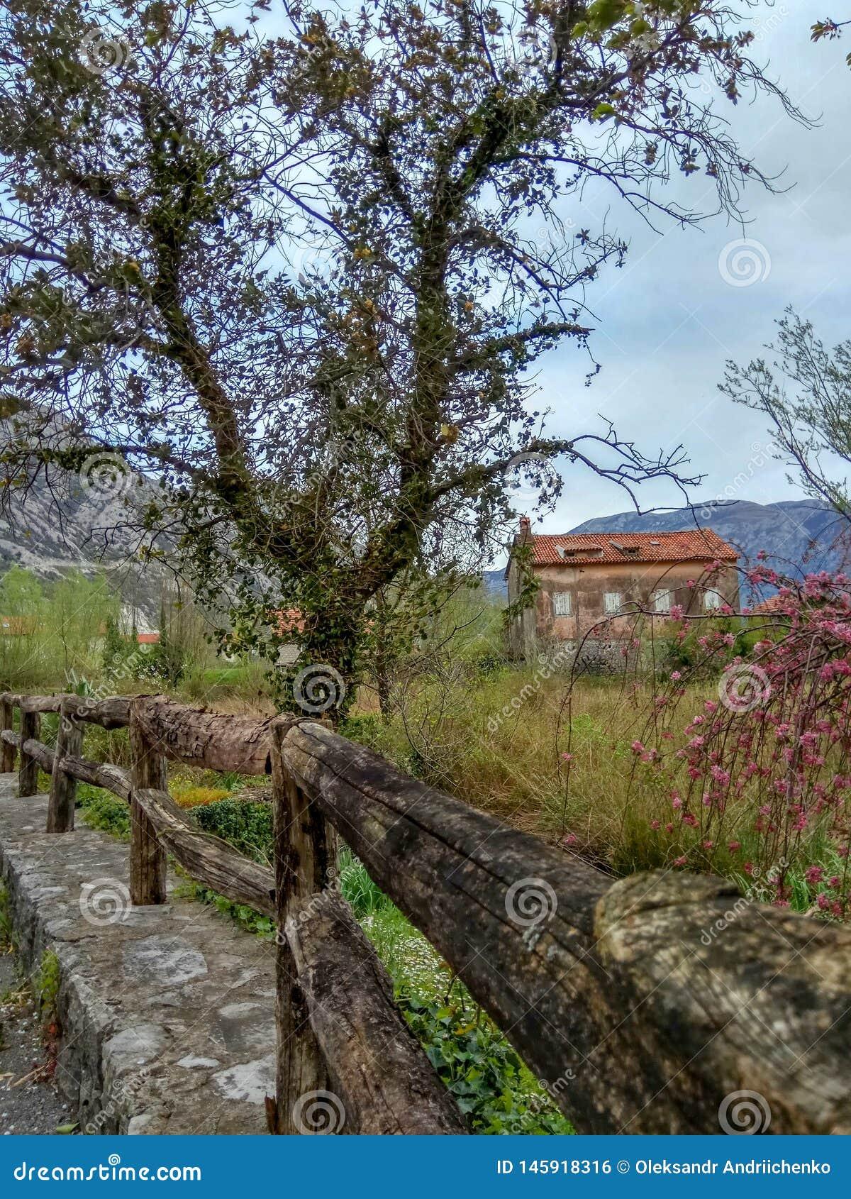 Cerca de madeira e casa velha em uma vila