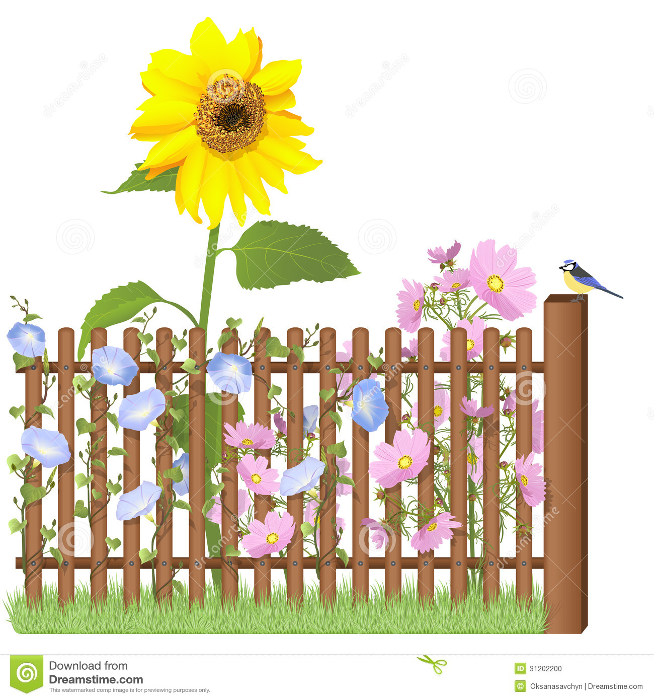 cerca jardim madeira:Wooden Fence and Flowers