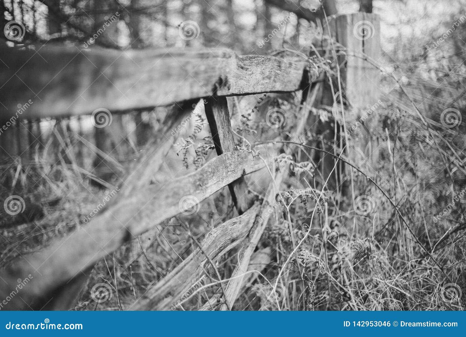 Cerca de madeira preto e branco