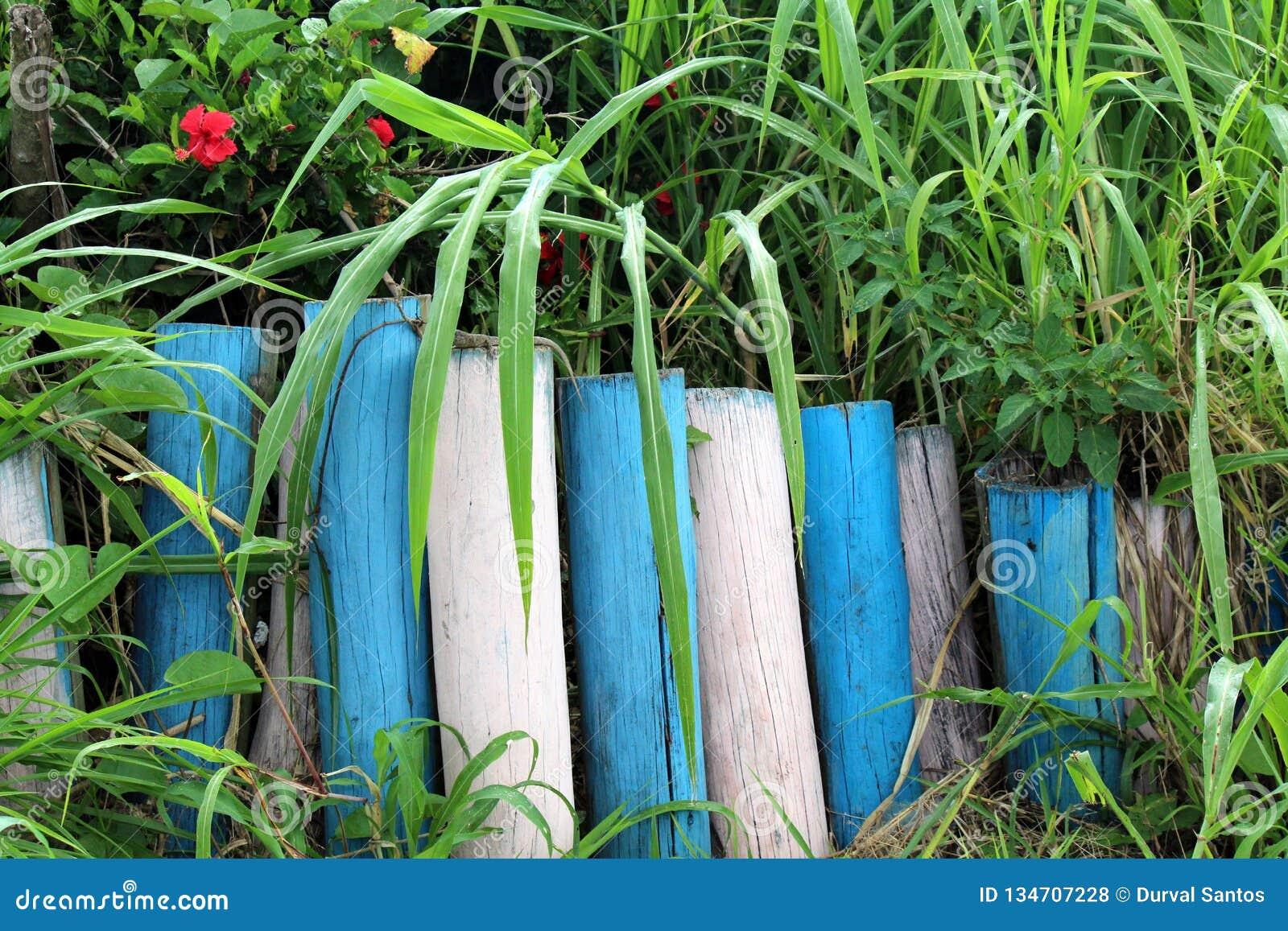 Cerca de madera entre la vegetación