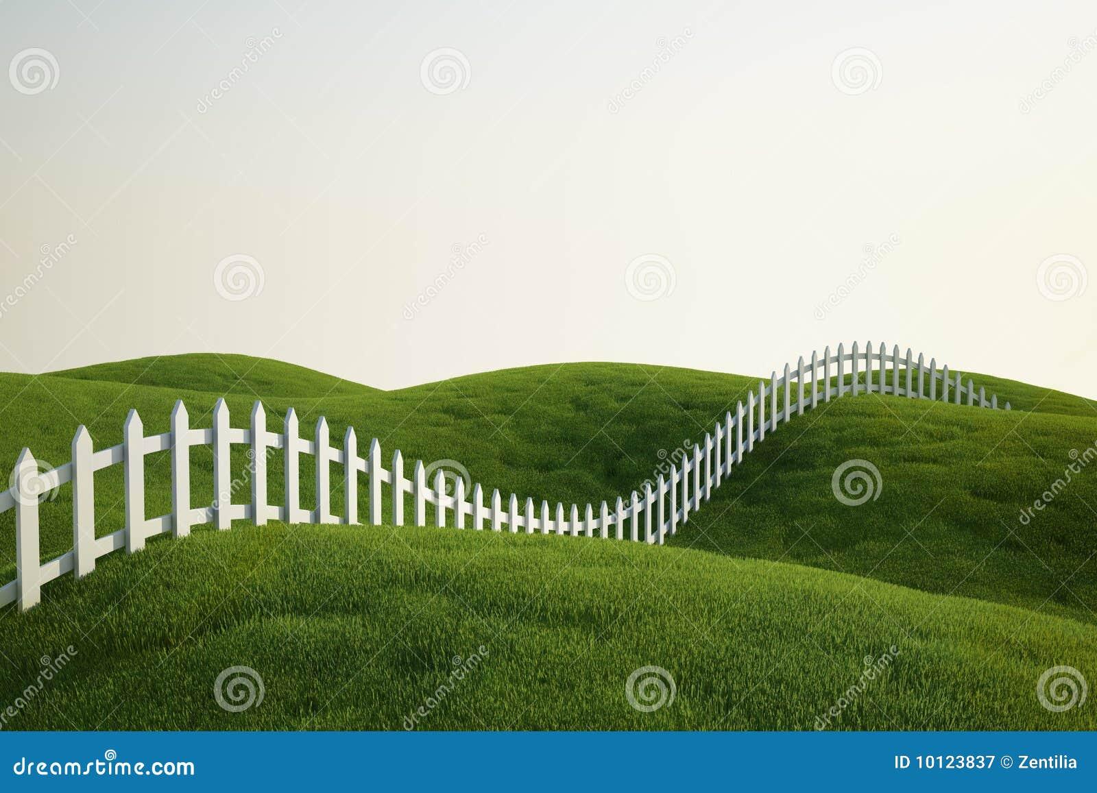Cerca de piquete blanca en hierba