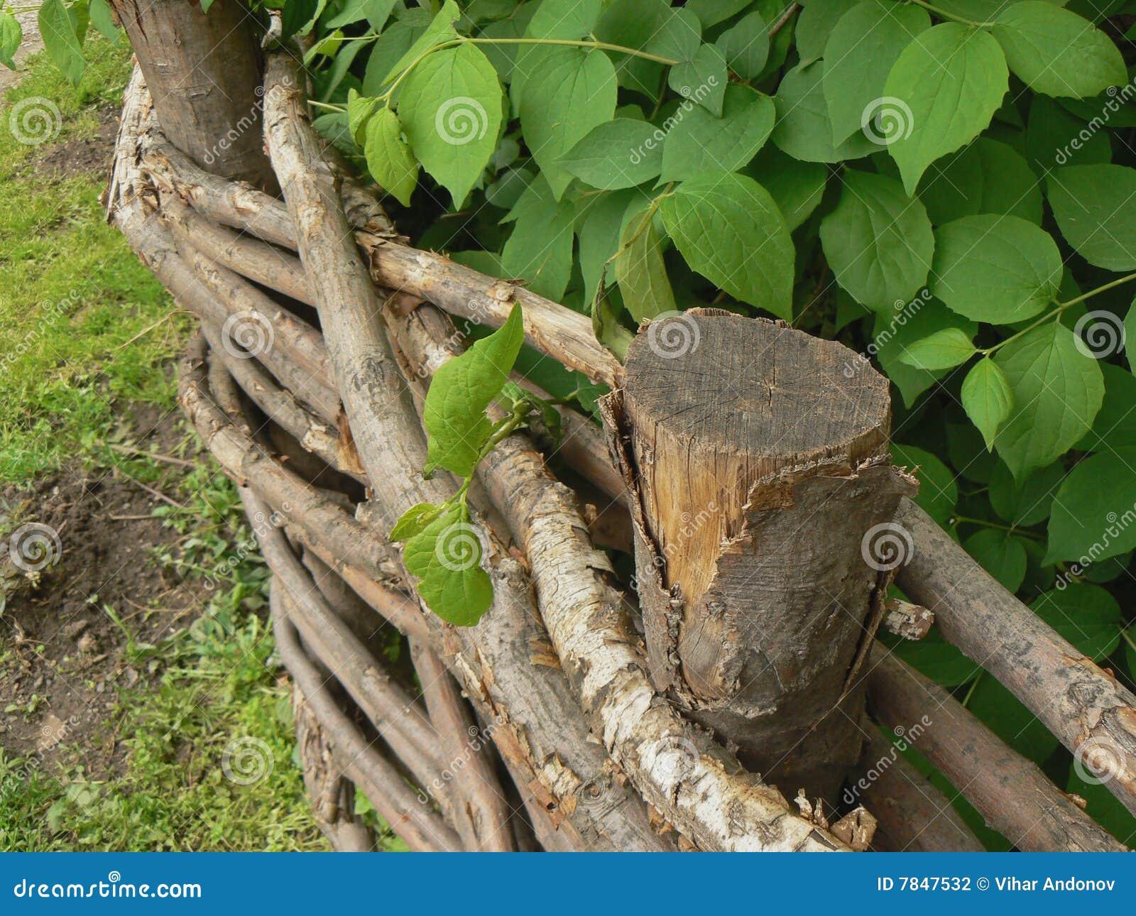 Cerca Do Jardim Fotografia de Stock  Imagem 7847532