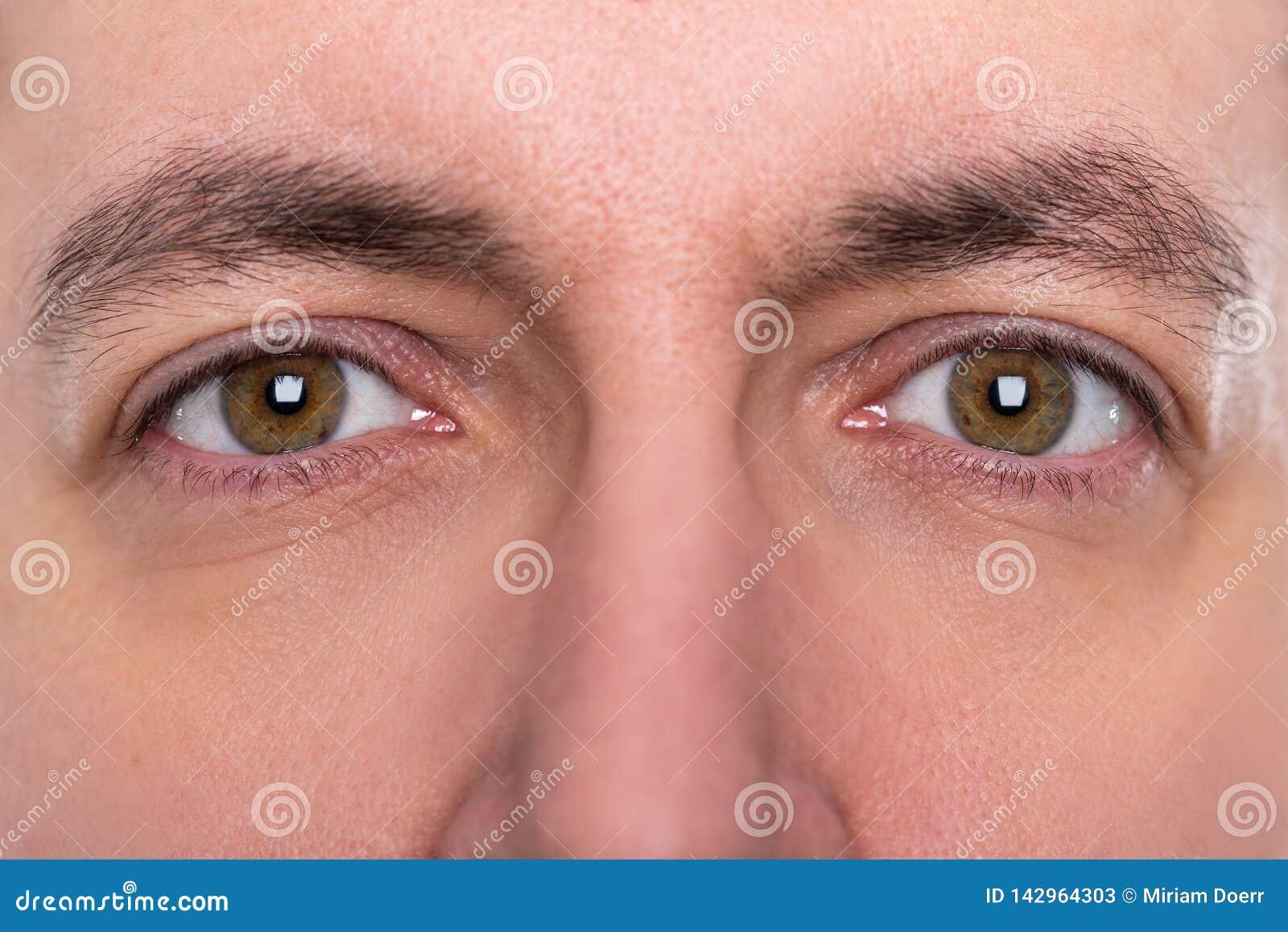 Cejas De Hombre cerca para arriba, ojos y cejas de un hombre imagen de