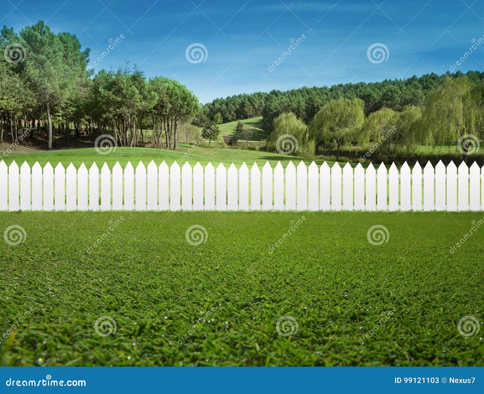 Cercas brancas na grama verde