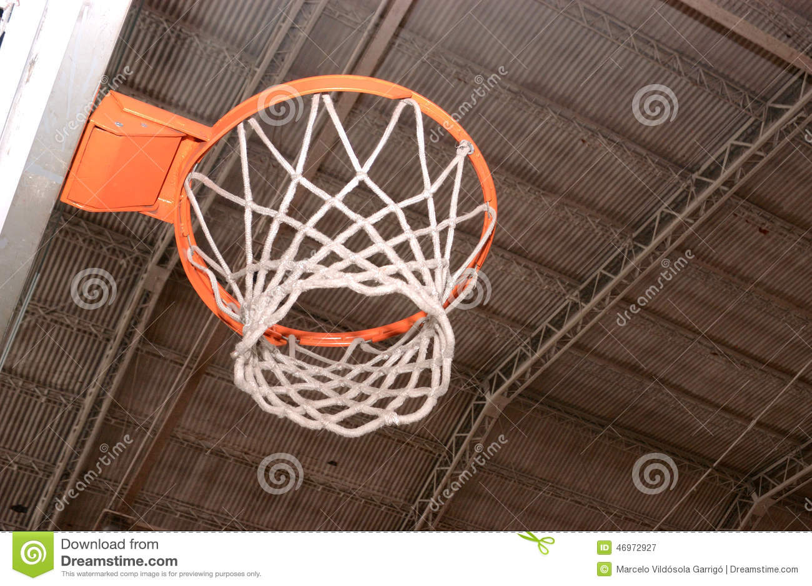 Cerchio di pallacanestro