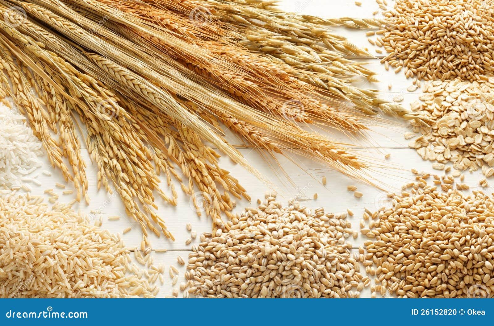 Cereais e grões