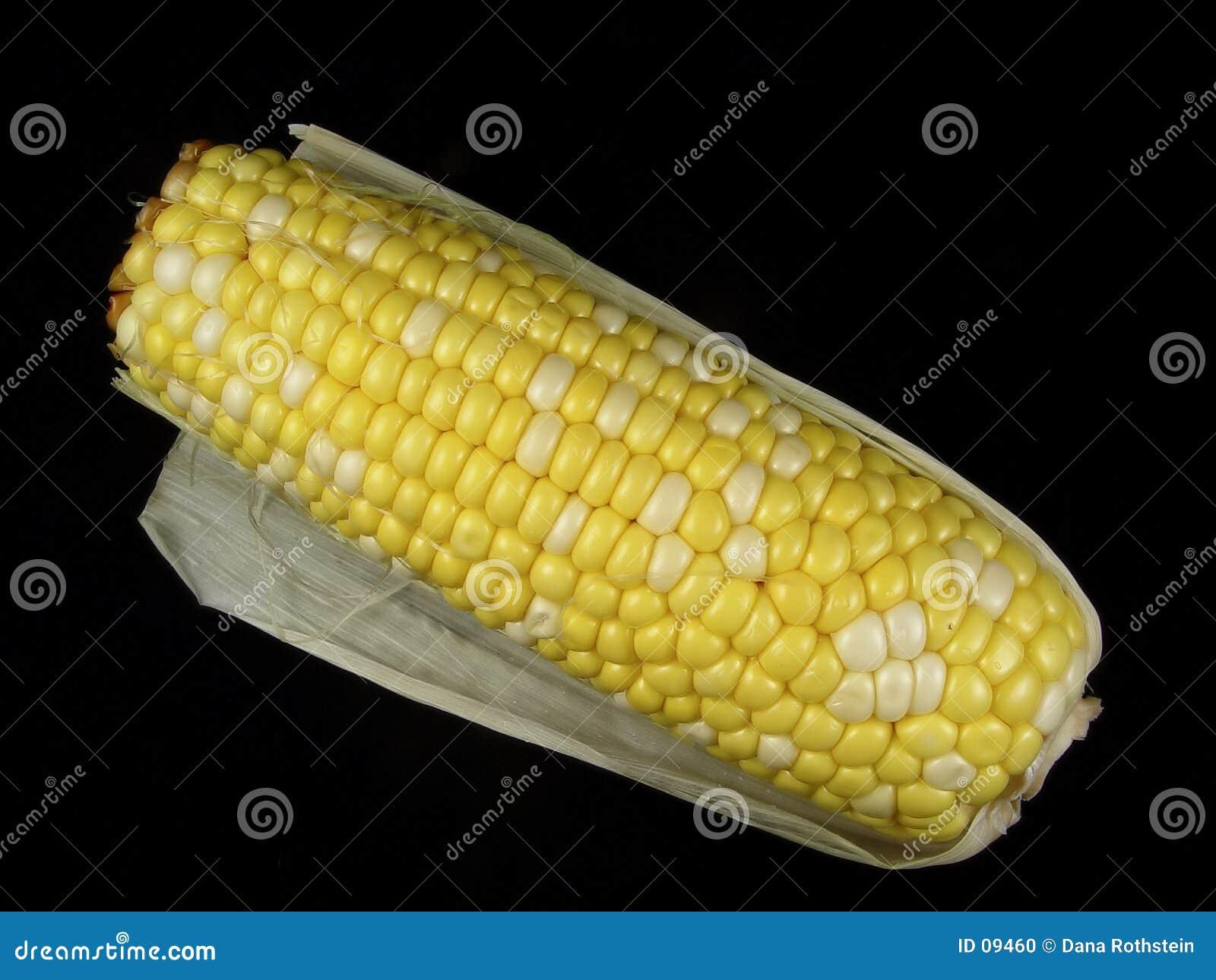 Download Cereale fotografia stock. Immagine di noccioli, mangi, verdura - 9460
