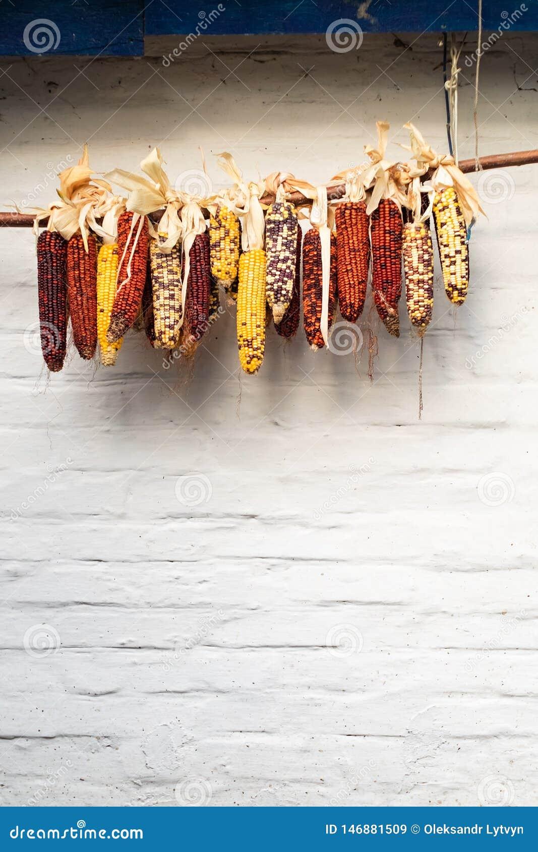 Cereale variopinto che appende su un fondo bianco della parete