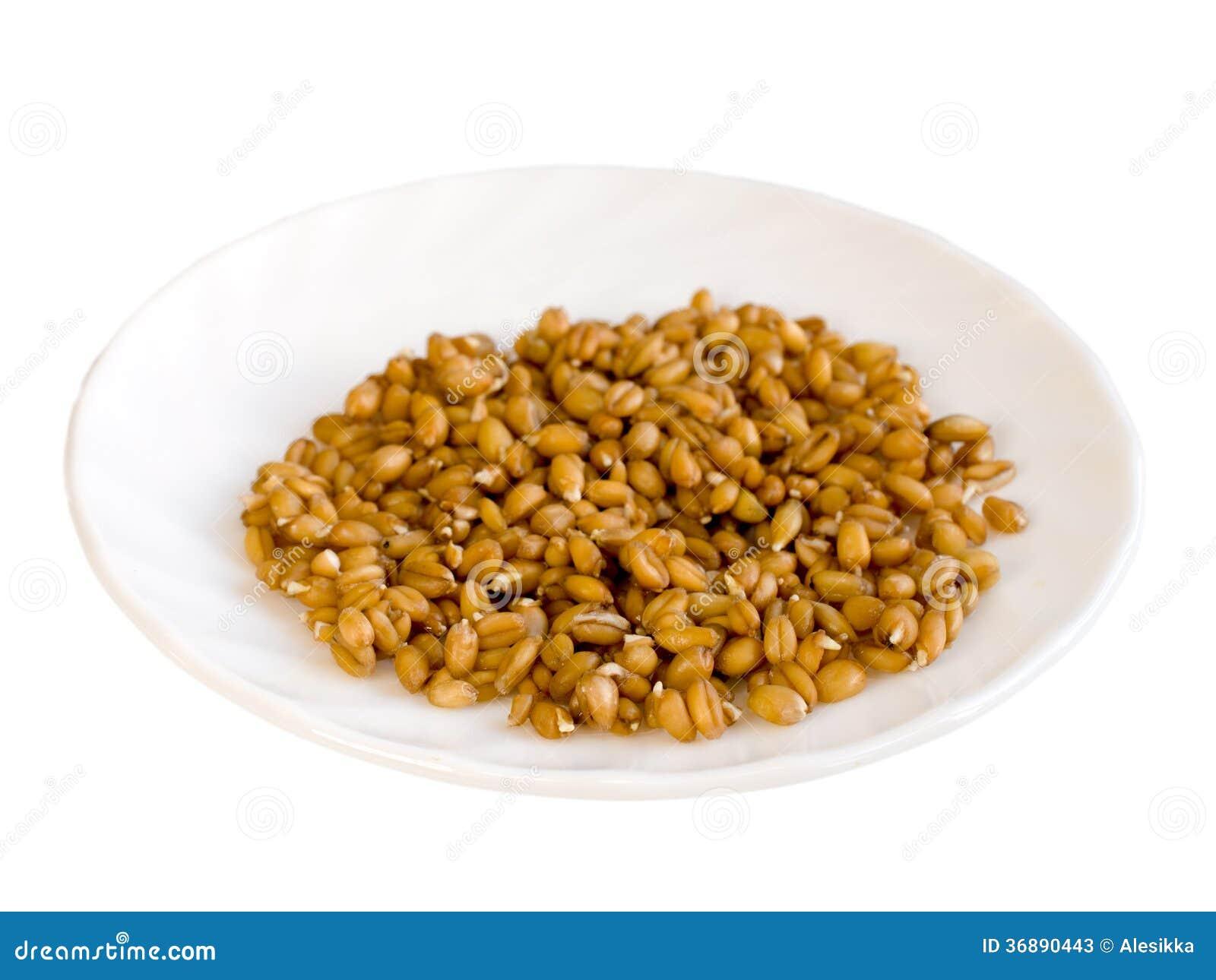 Download Cereali Germinati Sul Piatto Bianco Immagine Stock - Immagine di mucchio, consumo: 36890443