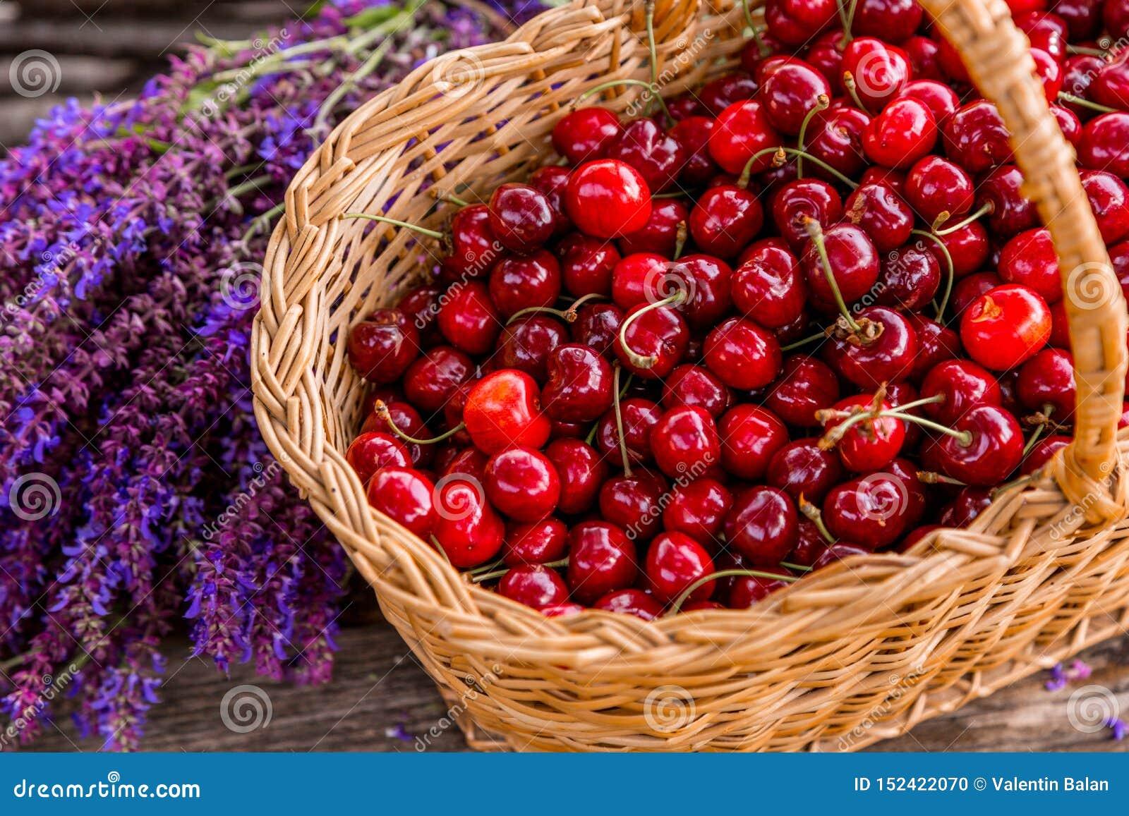 Cerejas frescas em um bascket de madeira