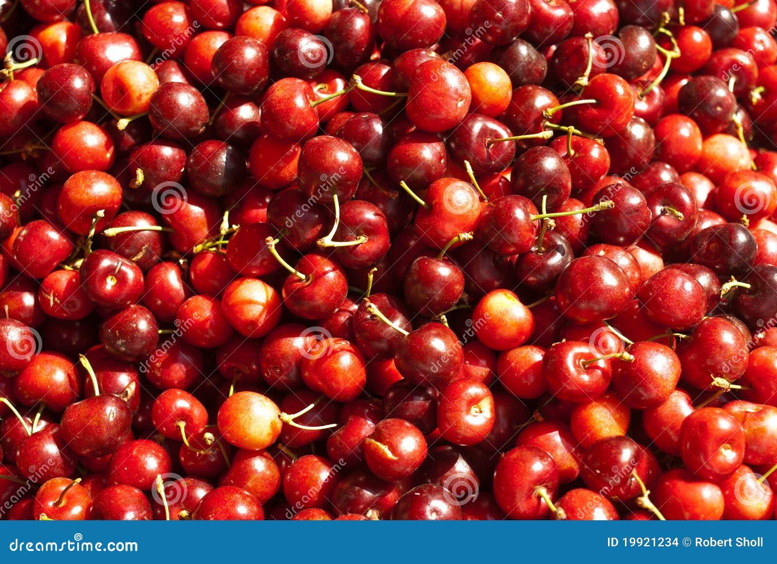 Cerejas vermelhas orgânicas