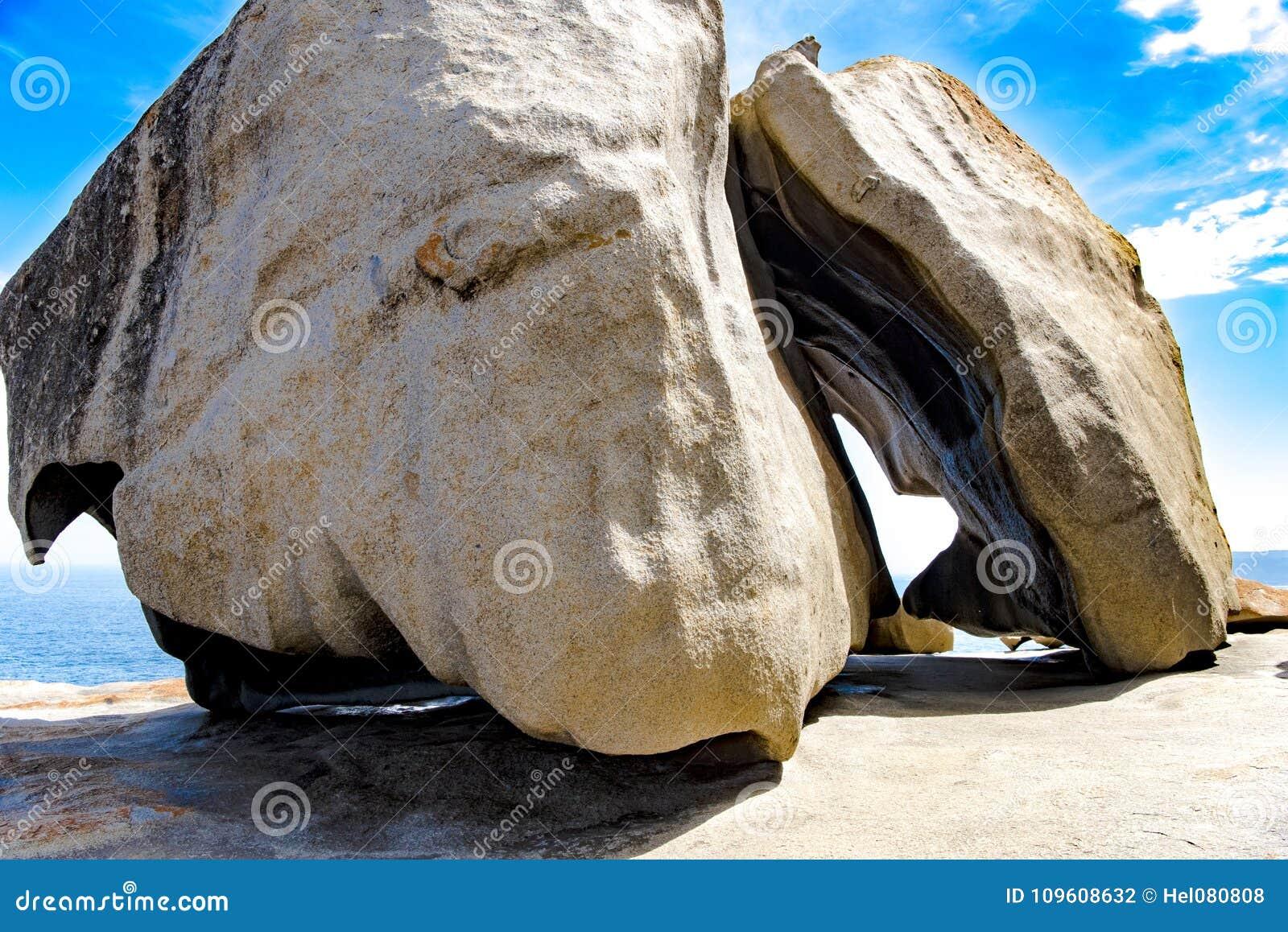 Cerf de pierre dans les roches remarquables, île de kangourou, Australie