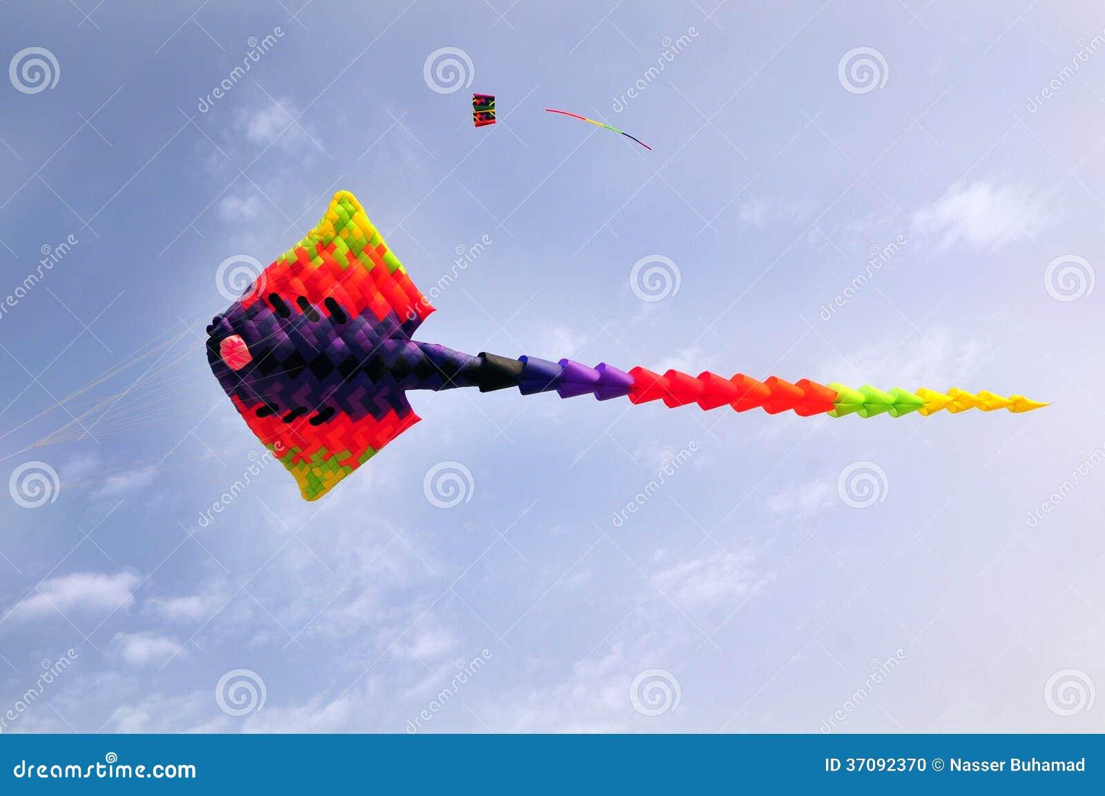 Cerf-volant de Ray