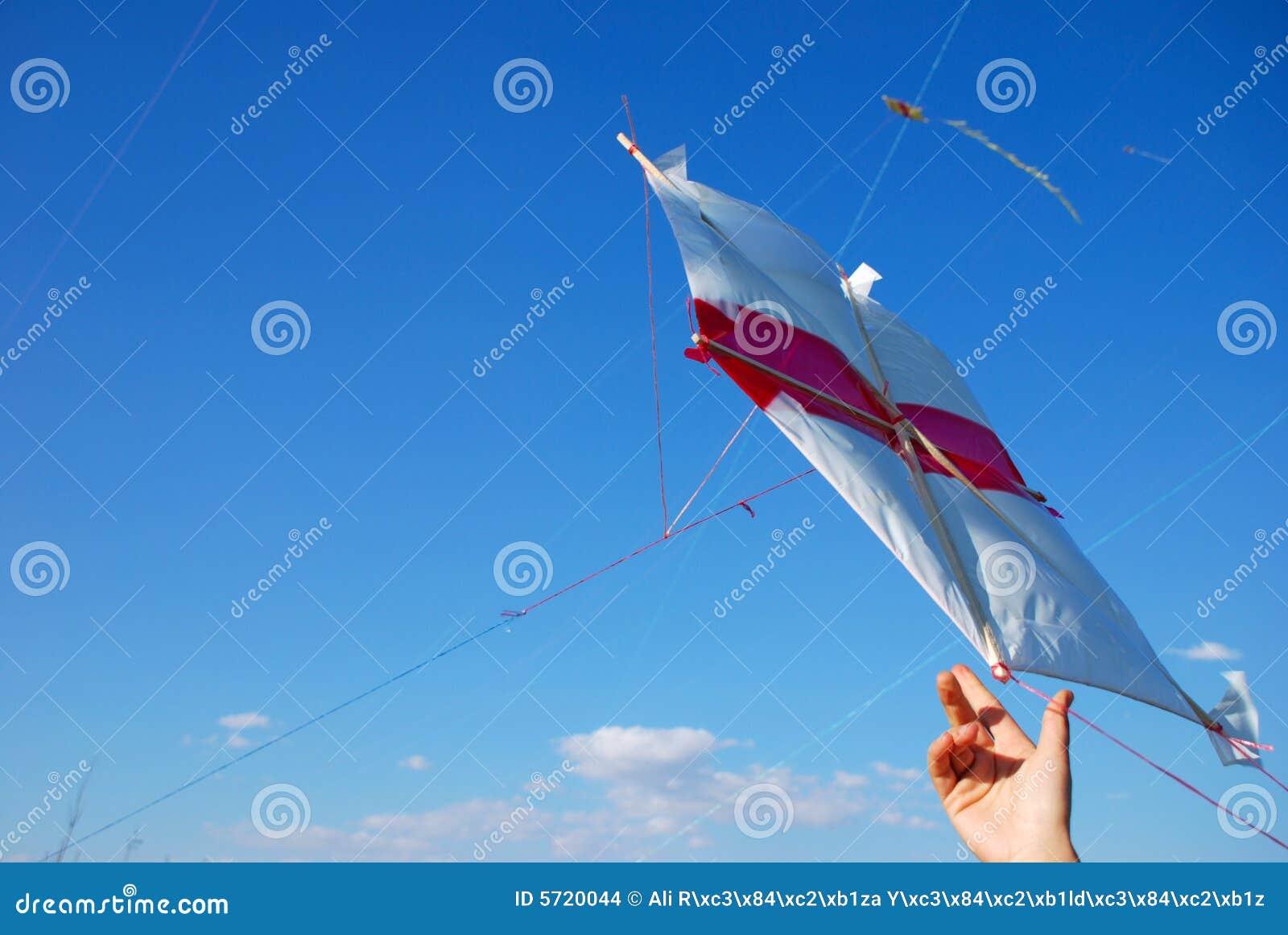 Cerf-volant de vol