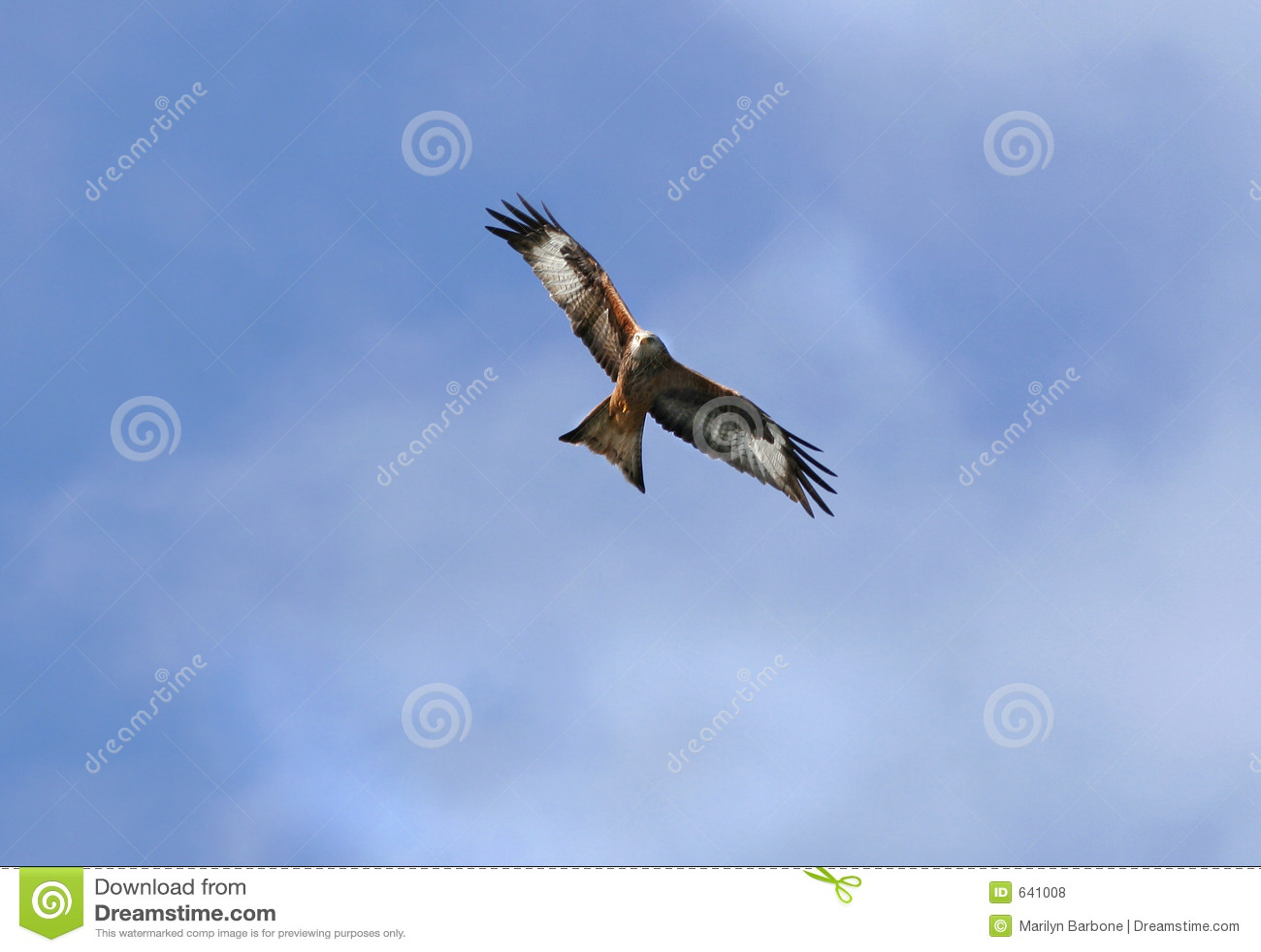 Cerf-volant rouge