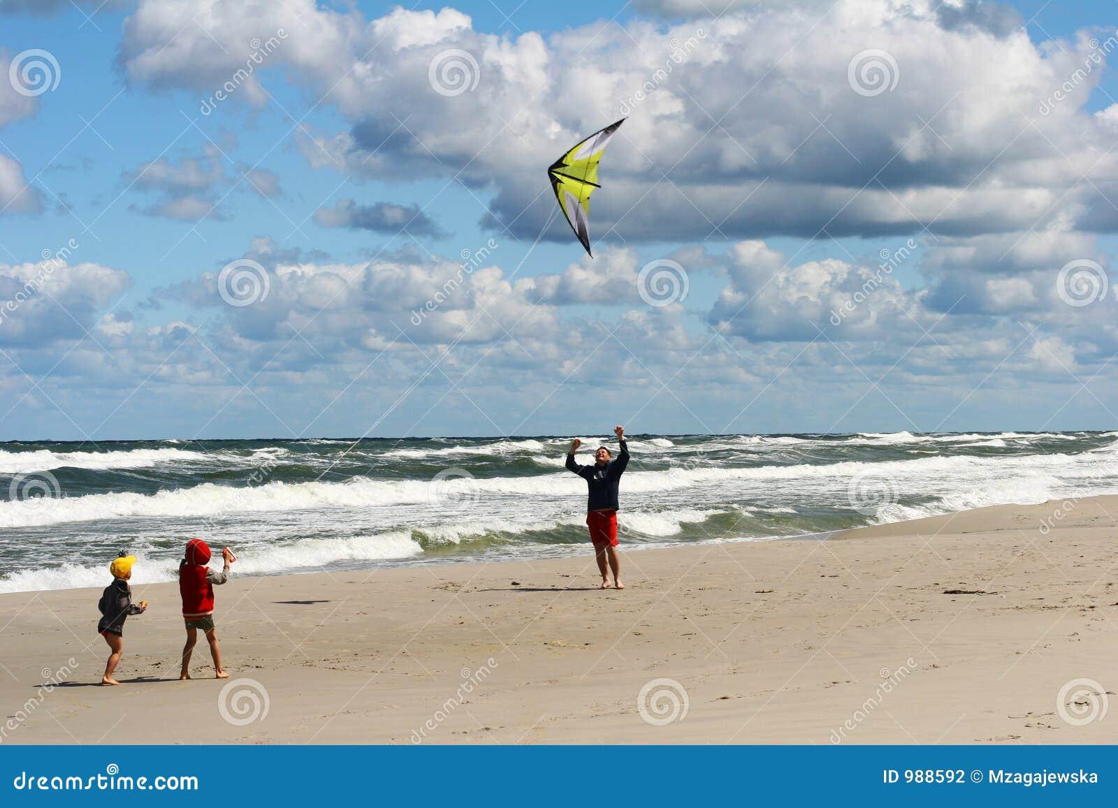 cerf volant sur la plage photo stock image du enfants 988592
