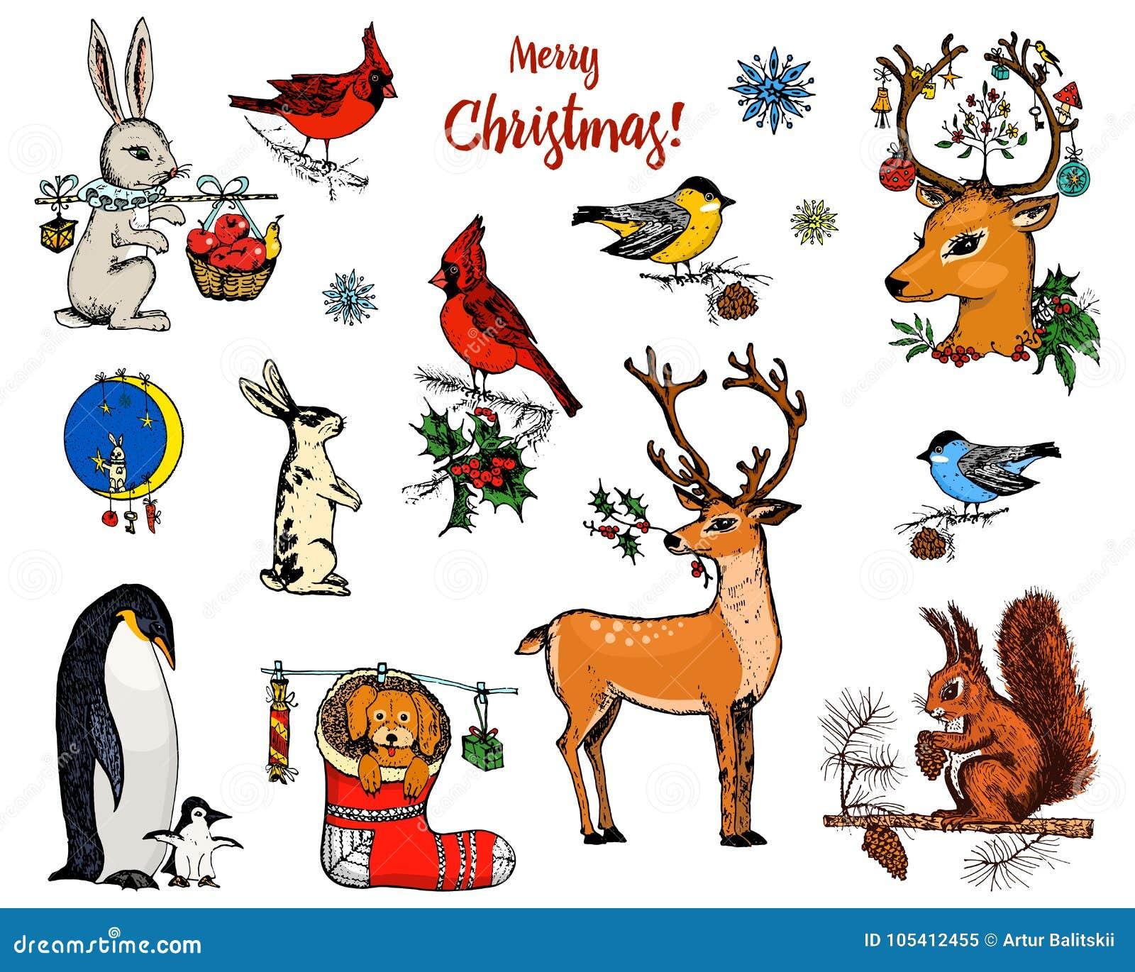 Cerfs communs, écureuil et animaux à cornes de Noël Pingouin de nouvelle année et cardinal ou mésange d oiseau pendant les vacanc