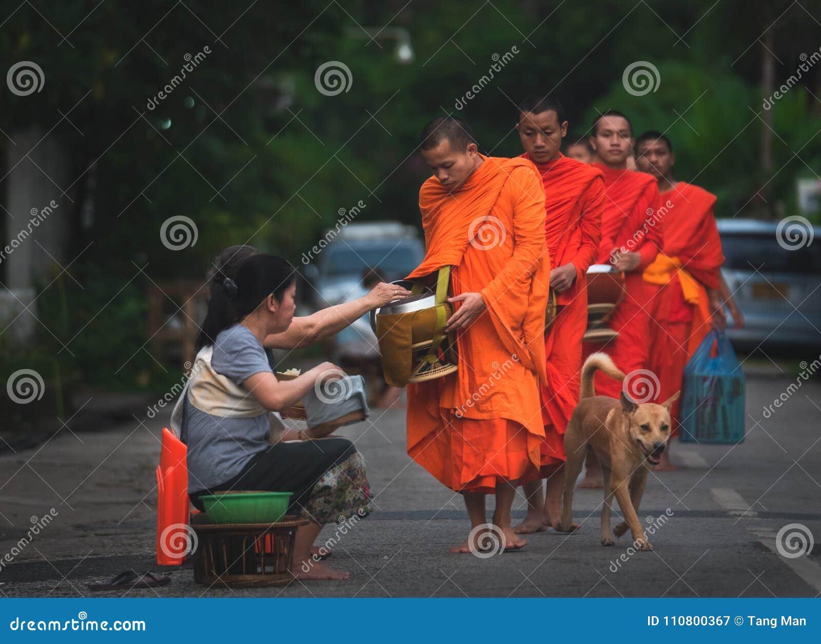 Cerimônia da esmola da oração e da manhã, Luang Prabang, Laos