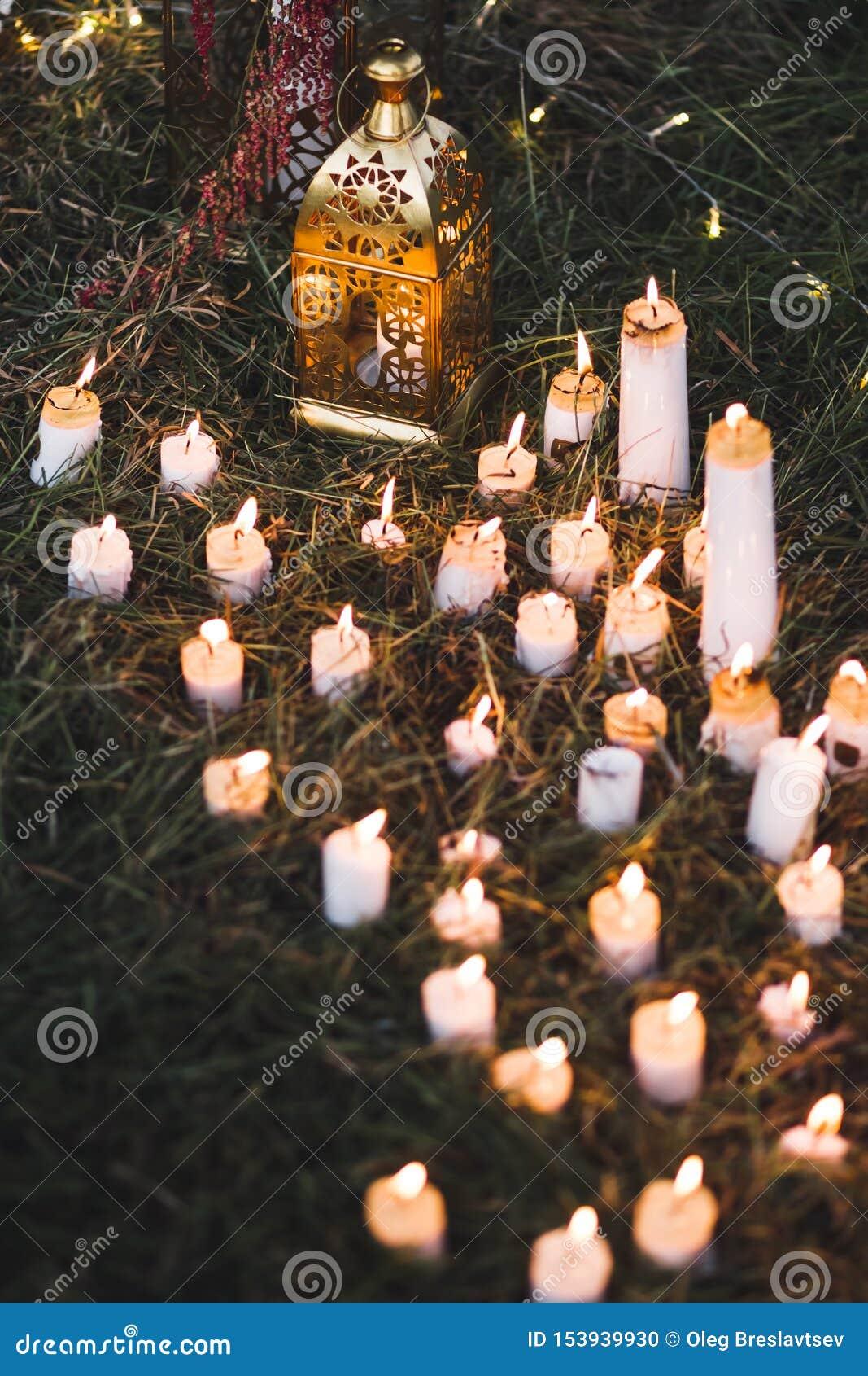 Cerimônia de casamento da noite com as lâmpadas do vintage na árvore