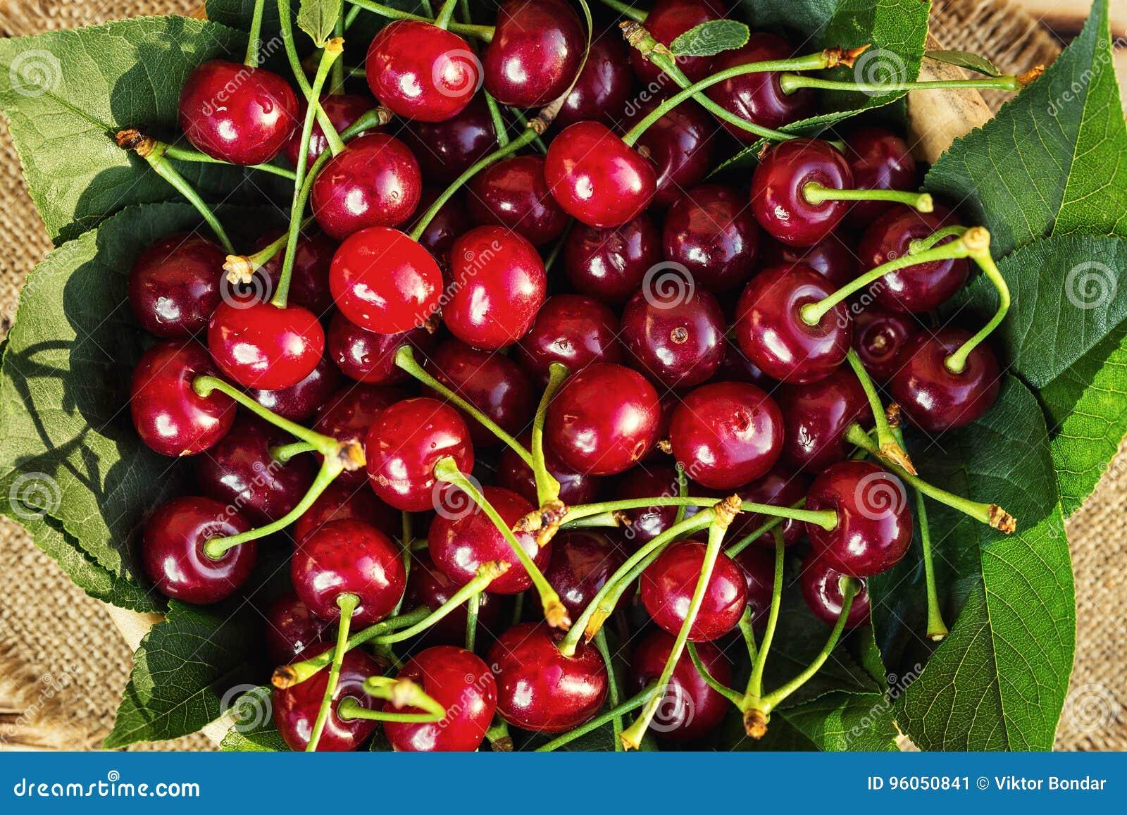 Cerises dans le panier sur la table en bois Cerise Cerises dans la cuvette Rouge