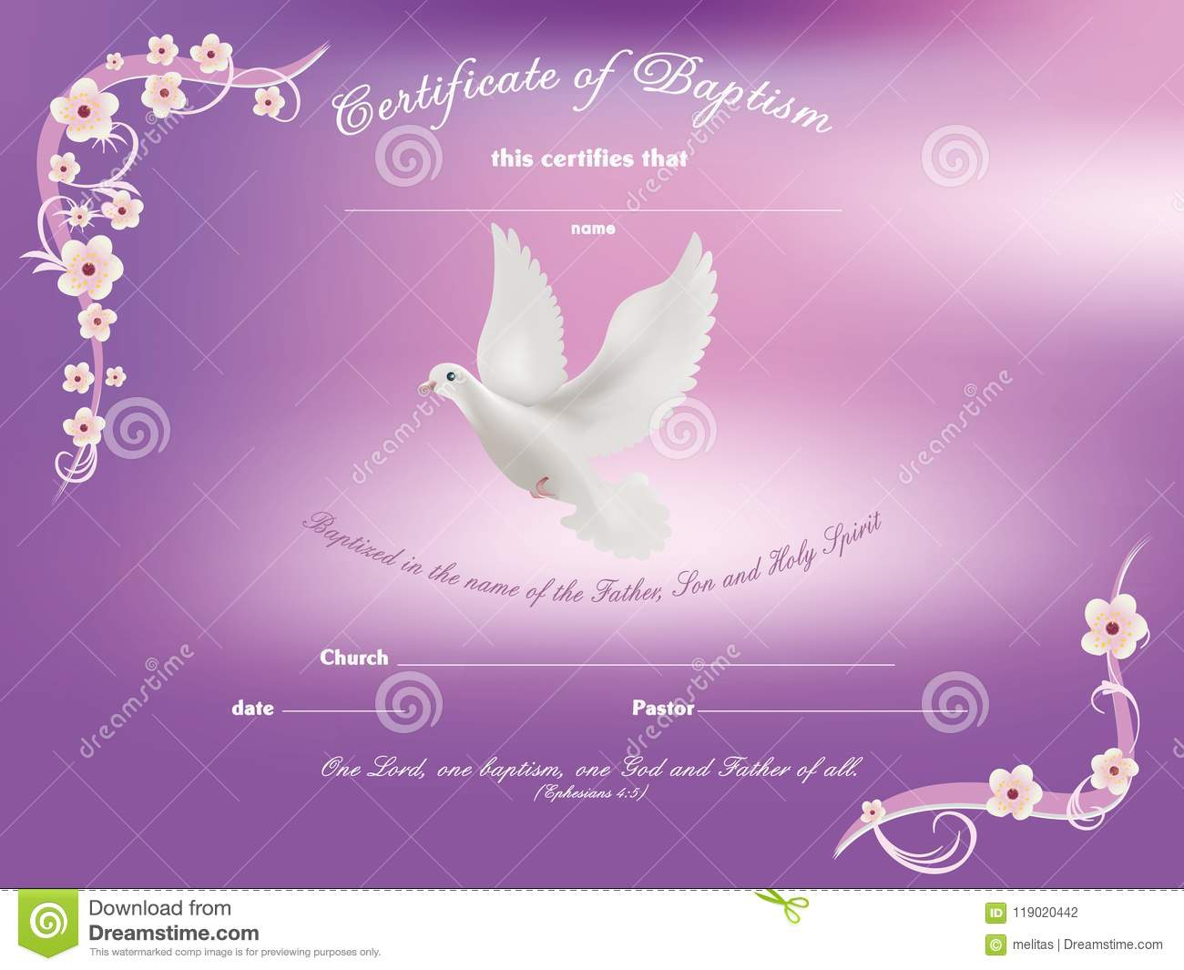 certificate baptism template with dove and and flowery frame on pink