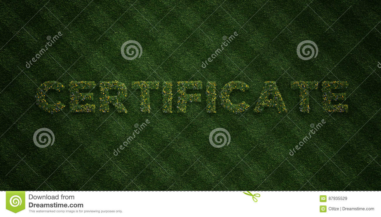 CERTIFICATE - fresh Grass letters with flowers and dandelions - 3D rendered royalty free stock image
