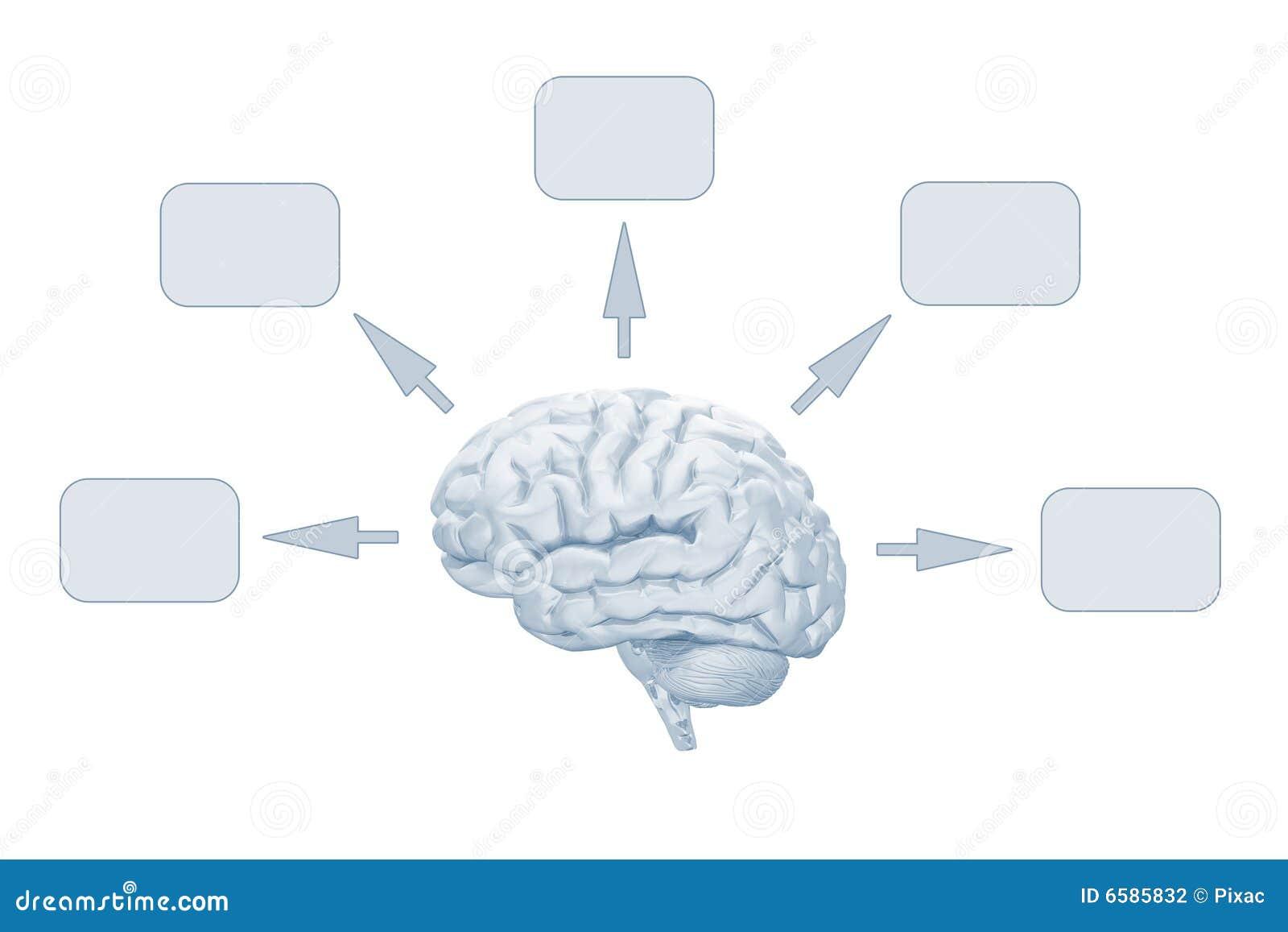 Cerveau intelligent