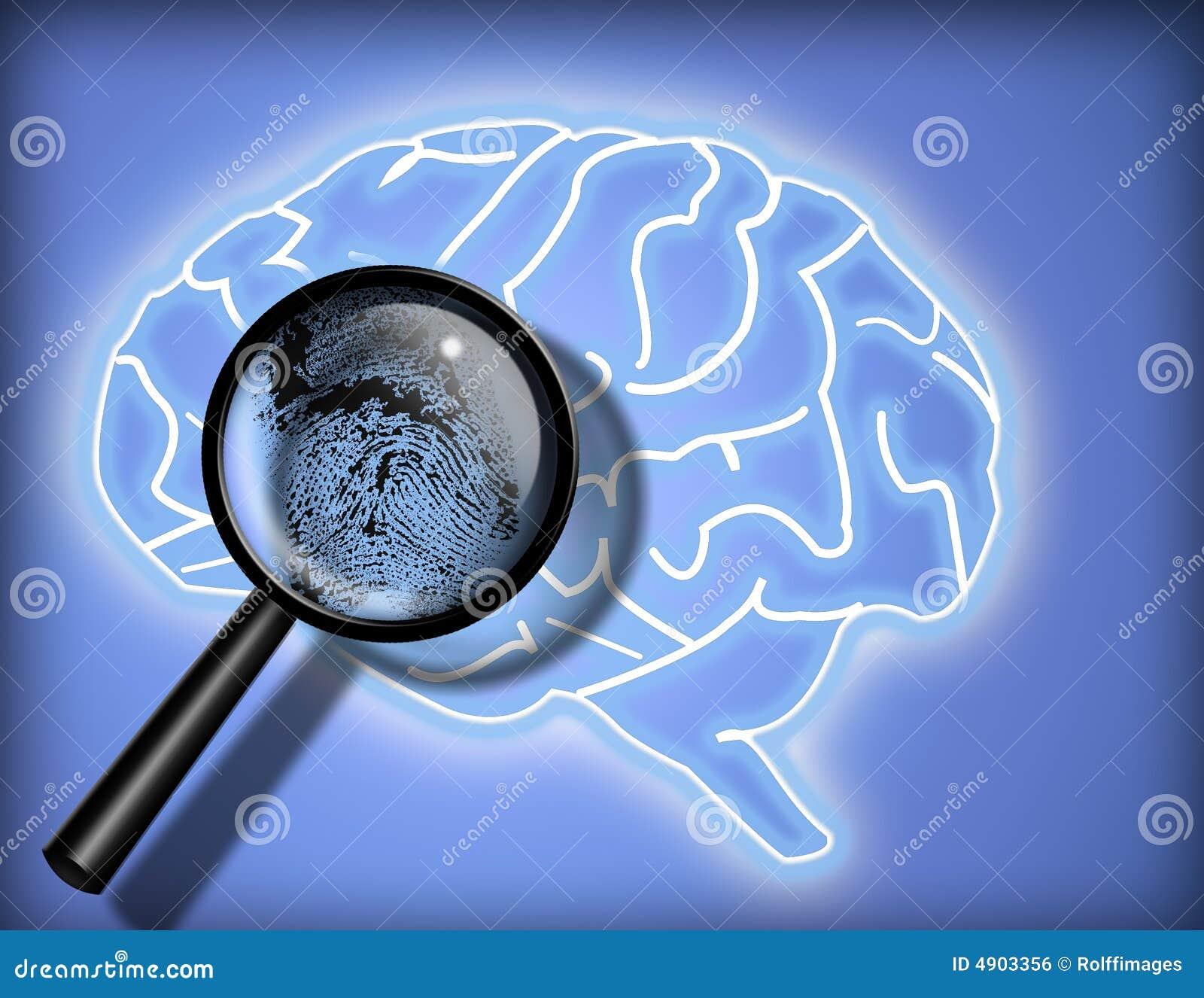 Cerveau - personnalité - identité