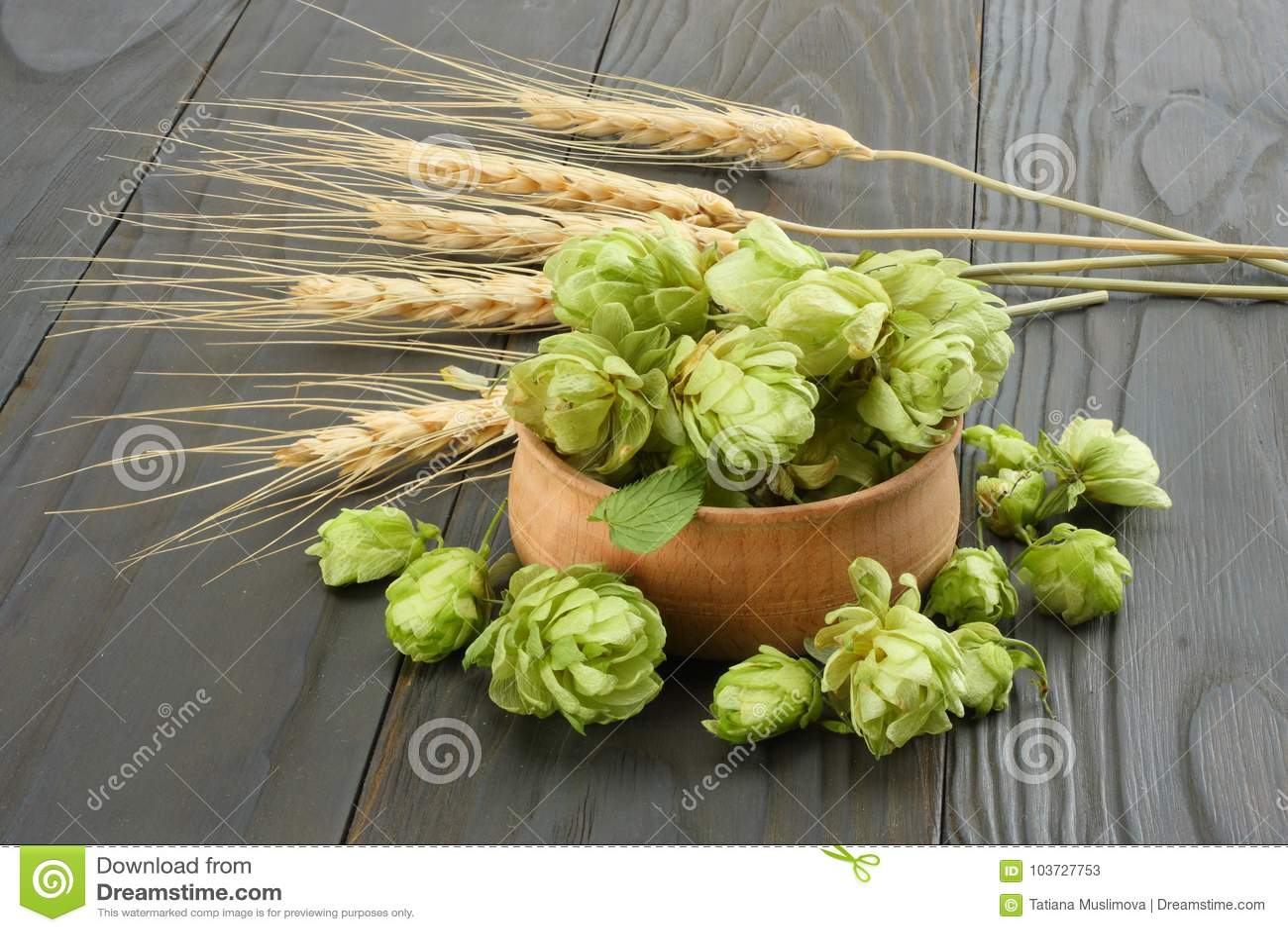 Cerveza que elabora los conos de salto de los ingredientes en oídos de madera del cuenco y del trigo en fondo de madera oscuro Co