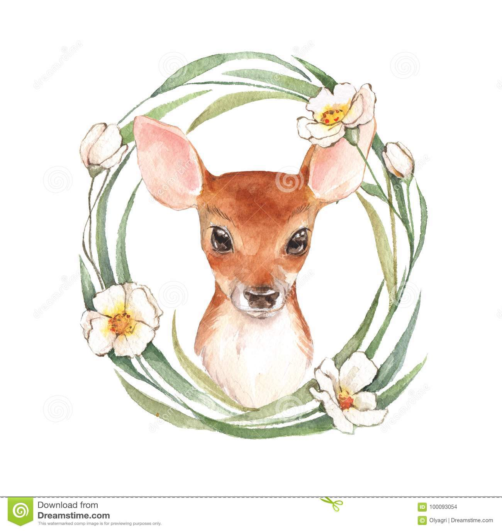 Cervi e fiori del bambino watercolor