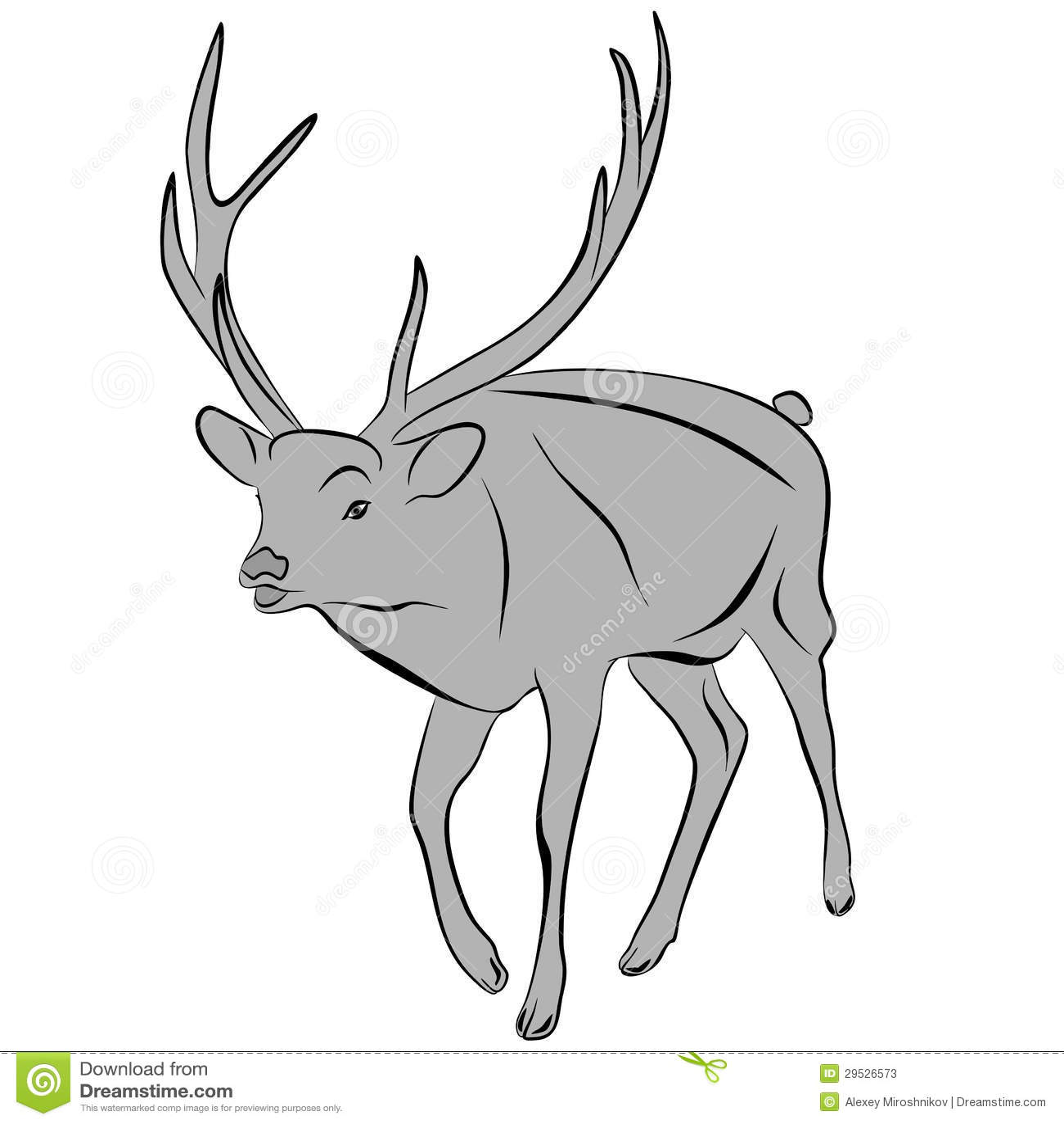 Cervos