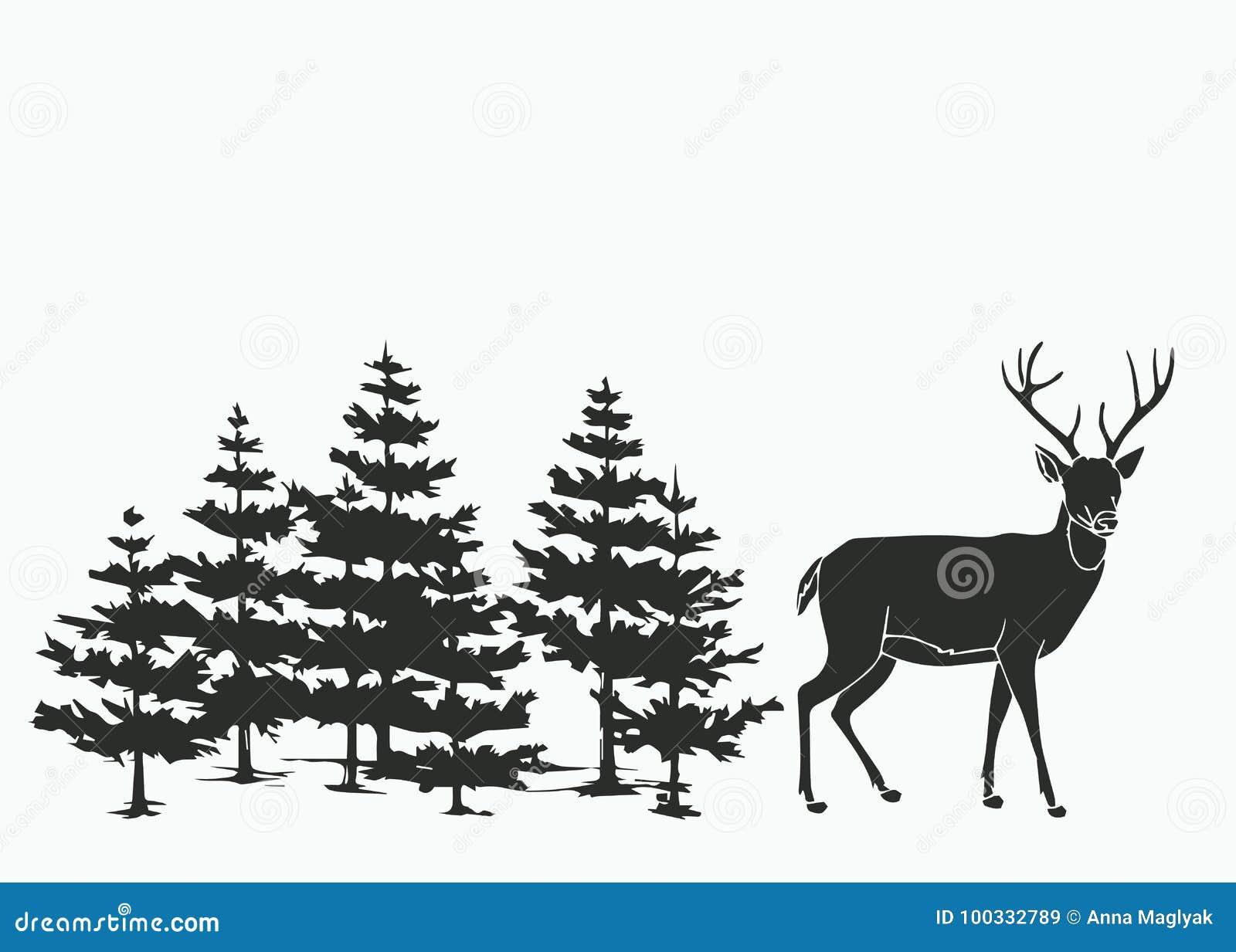 Cervos nas madeiras