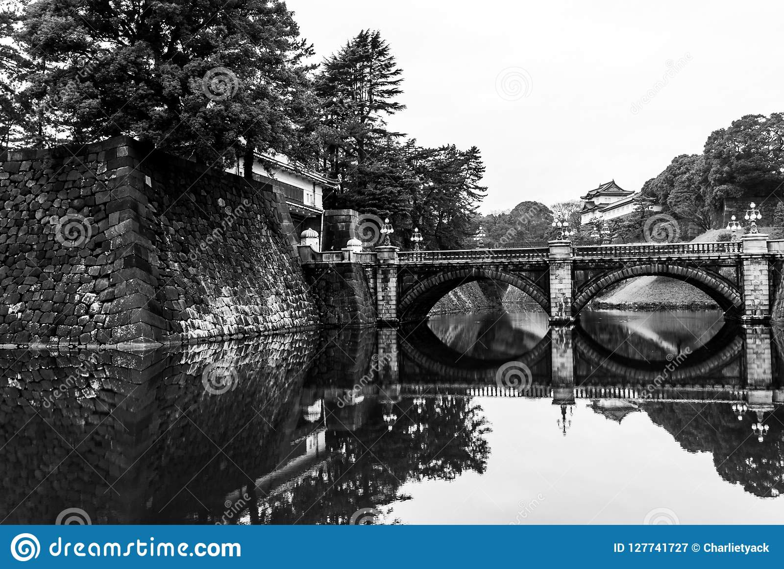 Cesarska pałac brama & most, Tokio, Japonia