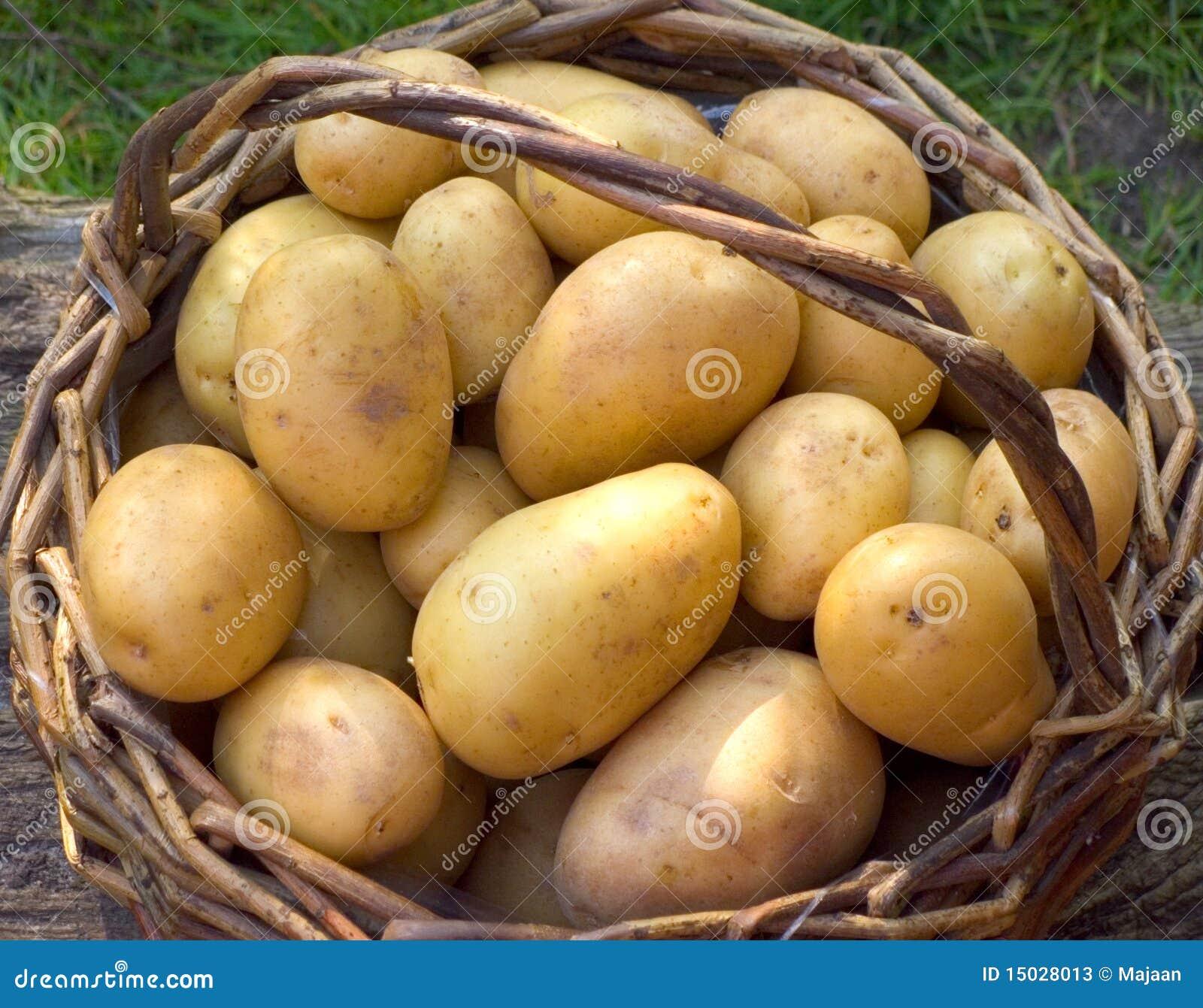 Cesta con las patatas