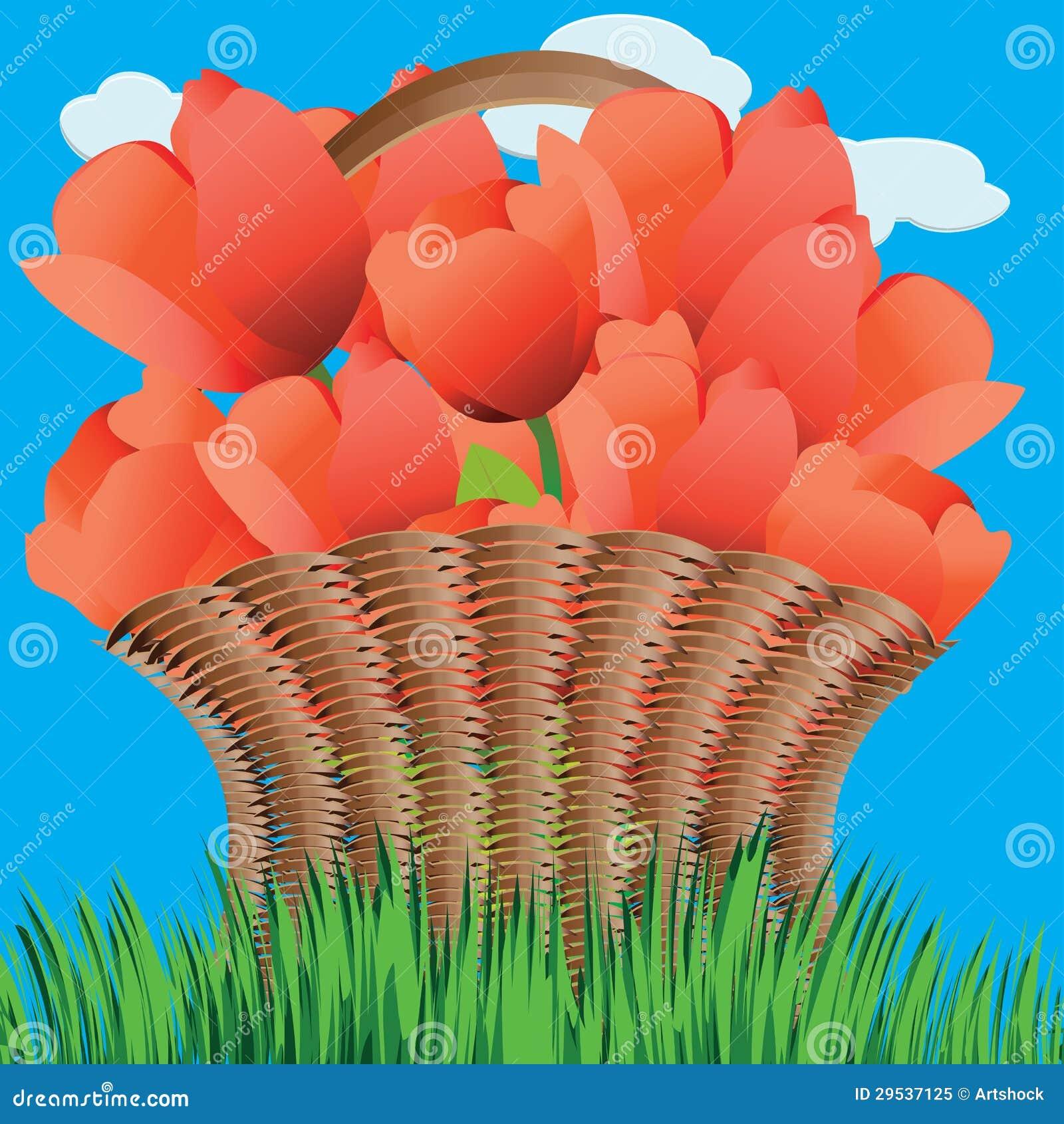 Cesta das tulipas