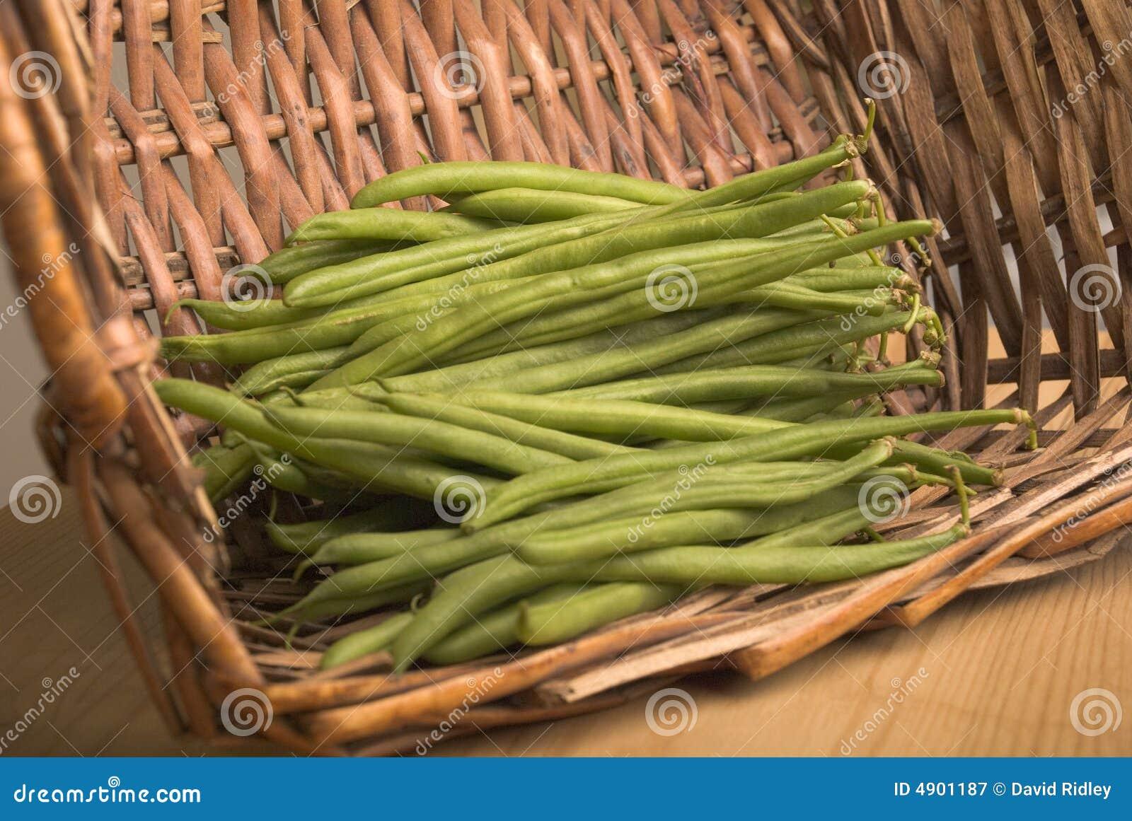 Cesta de habas verdes del bobby