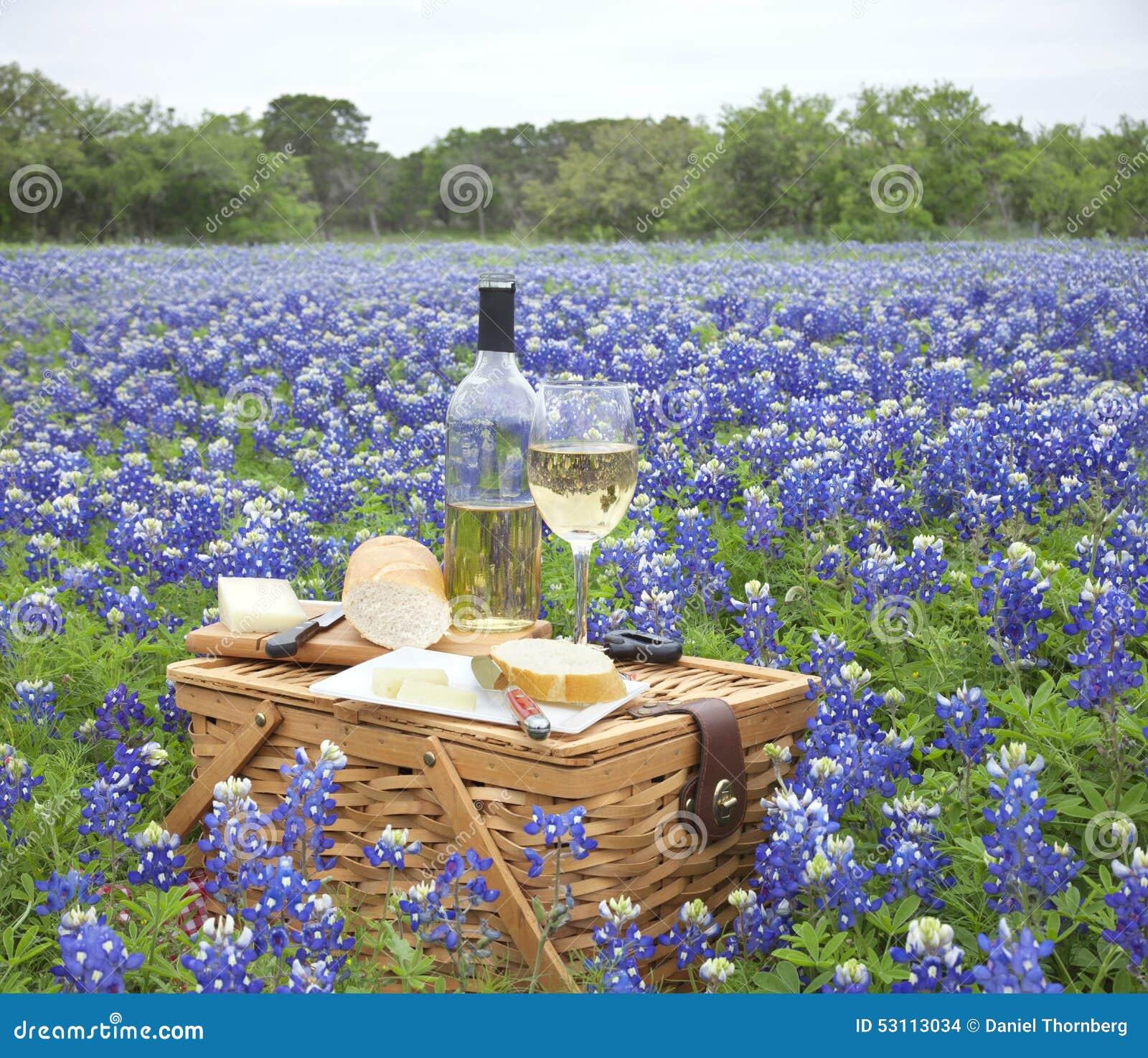 Cesta do piquenique com vinho, queijo e pão em Texas Hill Countr