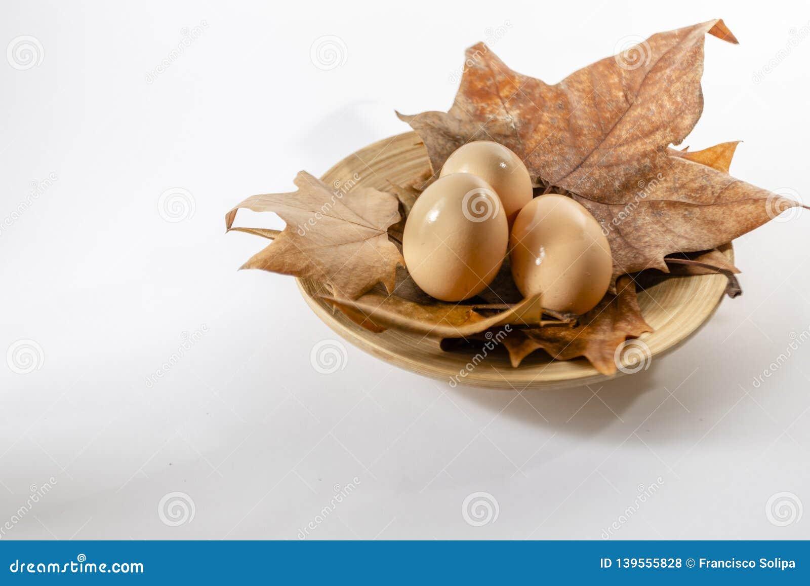 Cesta dos ovos no fundo branco da exploração agrícola com folhas de outono