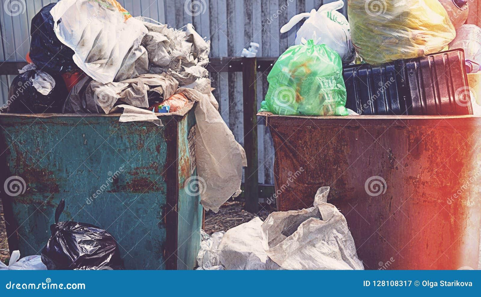 Cestino per i rifiuti in pieno di immondizia nel concetto della foresta del problema di ecologia