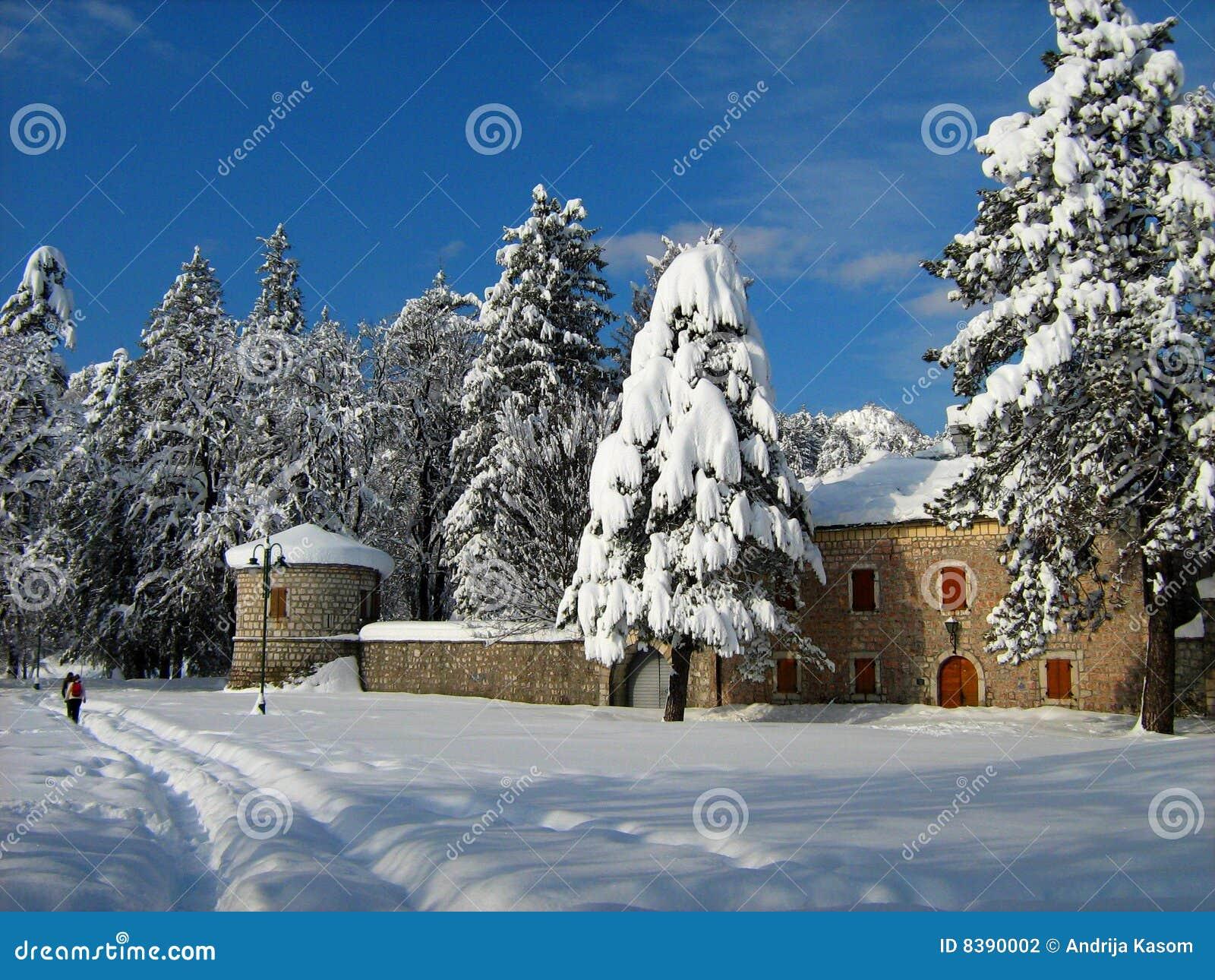 Cetinje e neve