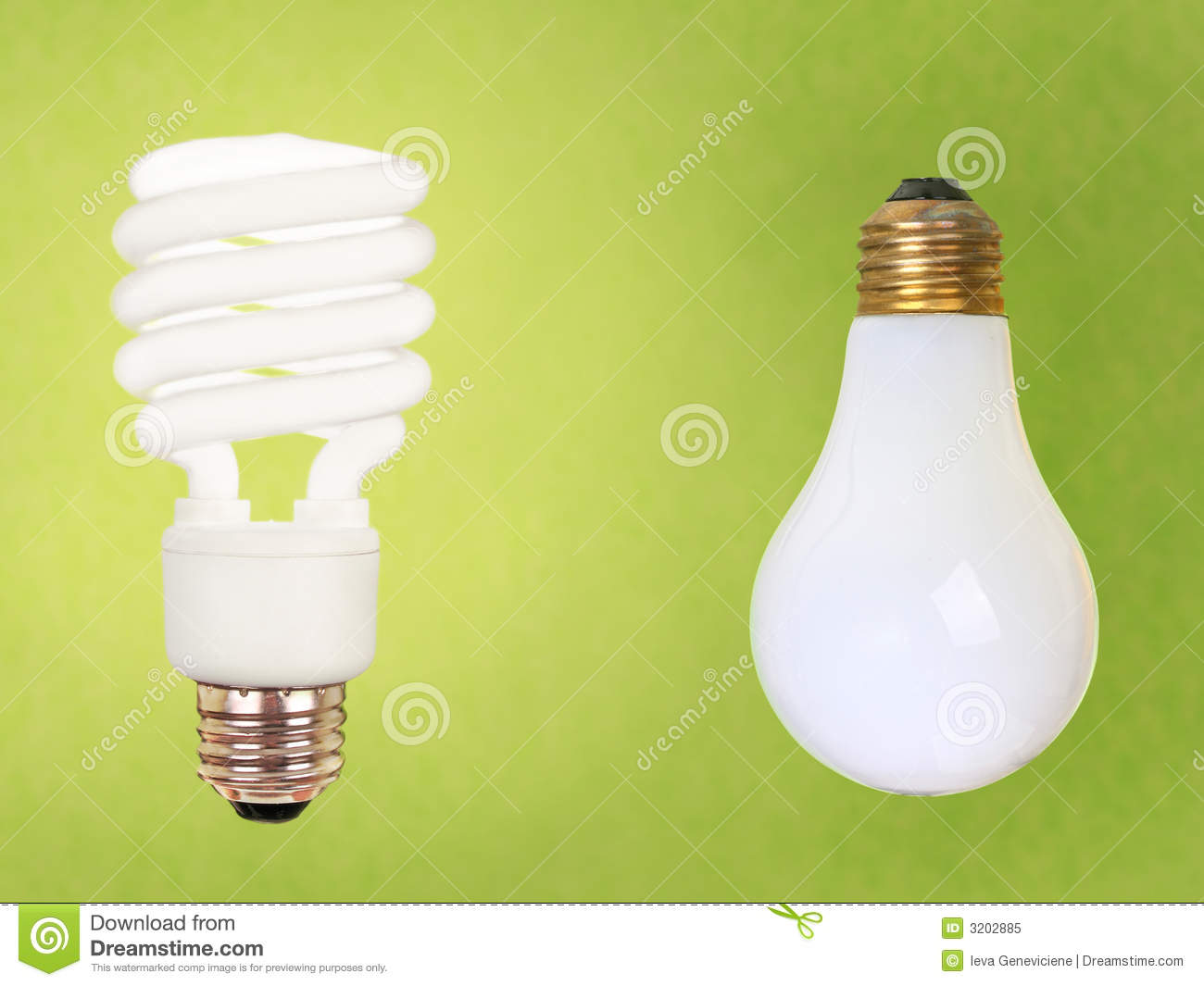 Cfl And Regular Bulbs On Green Royalty Free Stock Photo Image 3202885
