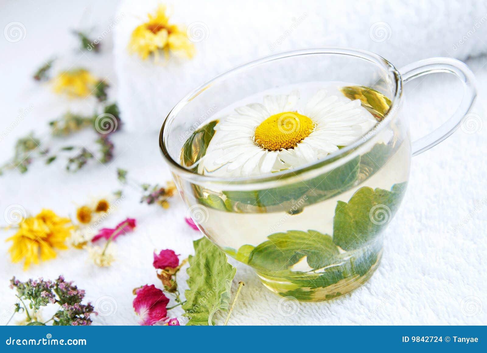 Chá médico da Camomila-hortelã