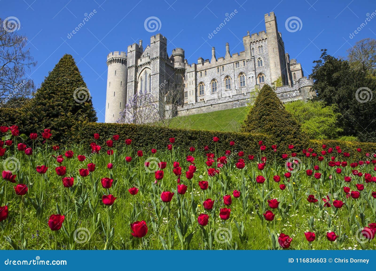 Château d Arundel dans le Sussex occidental