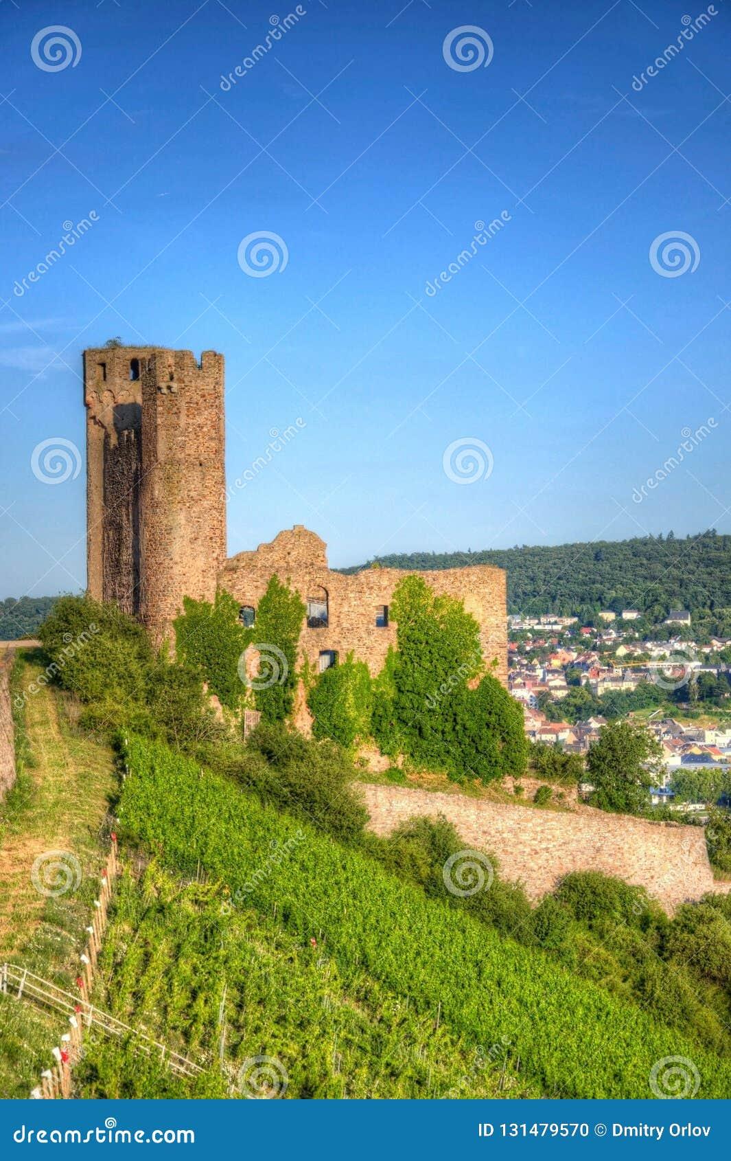 Château d Ehrenfels, Burg Ehrenfels sur le Rhin près de Ruedesheim et Bingen AM Rhein, Hesse, Allemagne