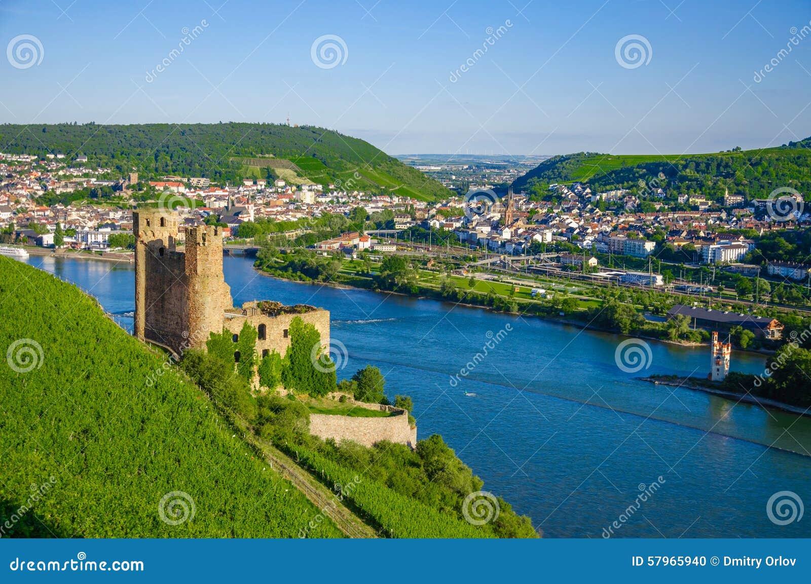 Château d Ehrenfels sur le Rhin près de Ruedesheim