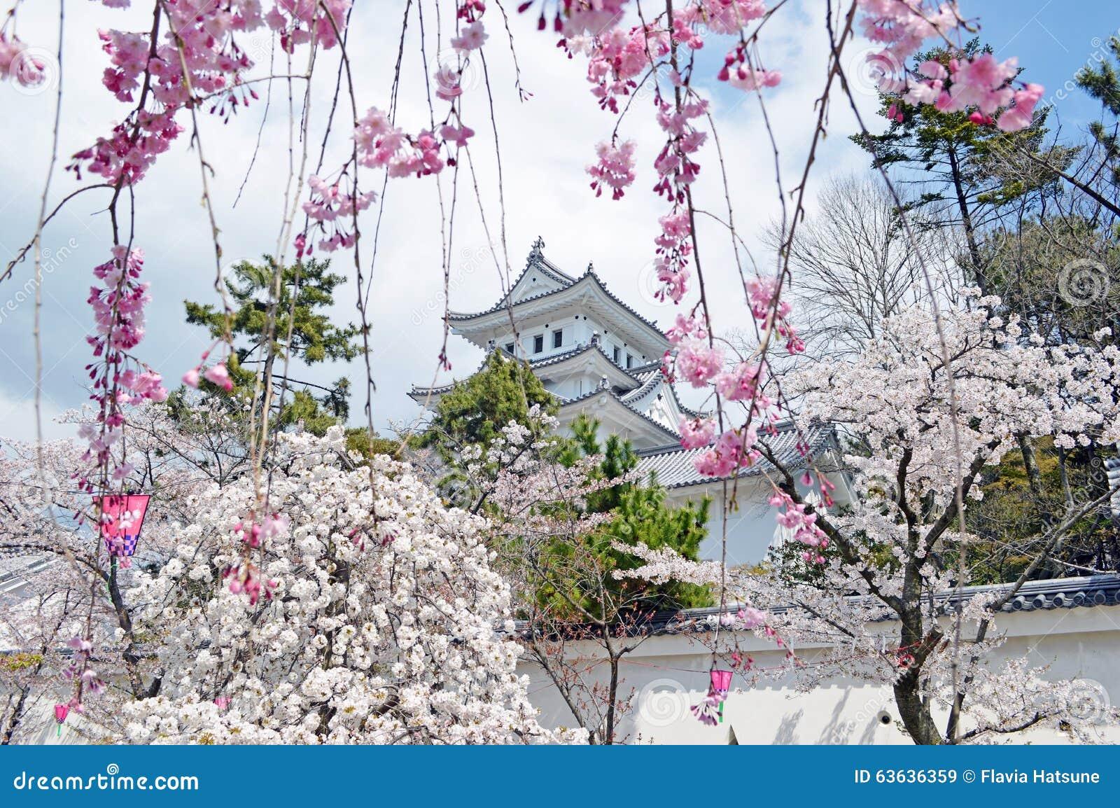 Château d Ogaki à Gifu
