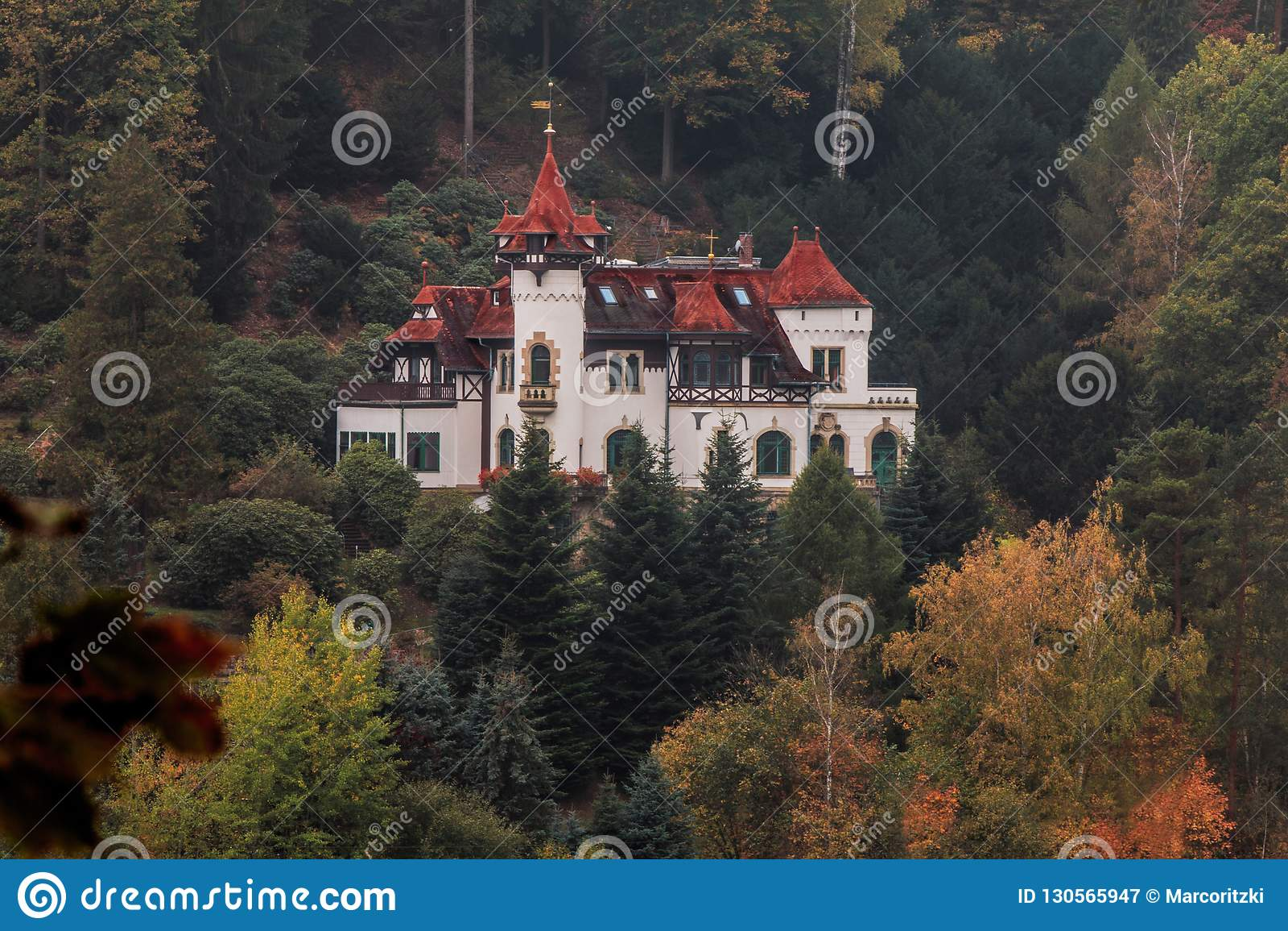 Château de conte de fées au milieu d un mountaine de la forêt