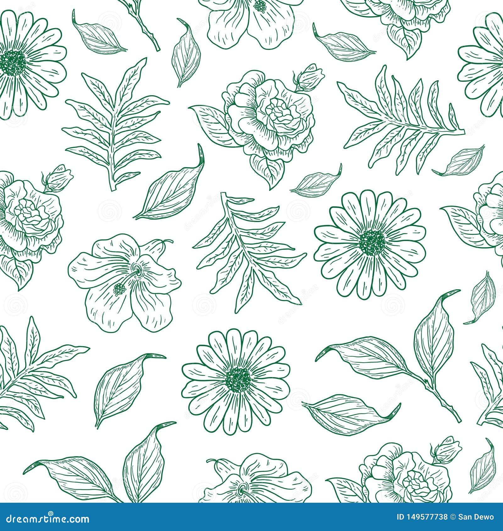 Chłodno rocznika kwiatu ilustracji wzór