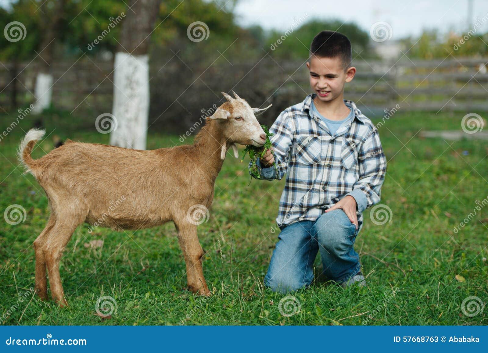 Chłopiec żywieniowa kózka w ogródzie