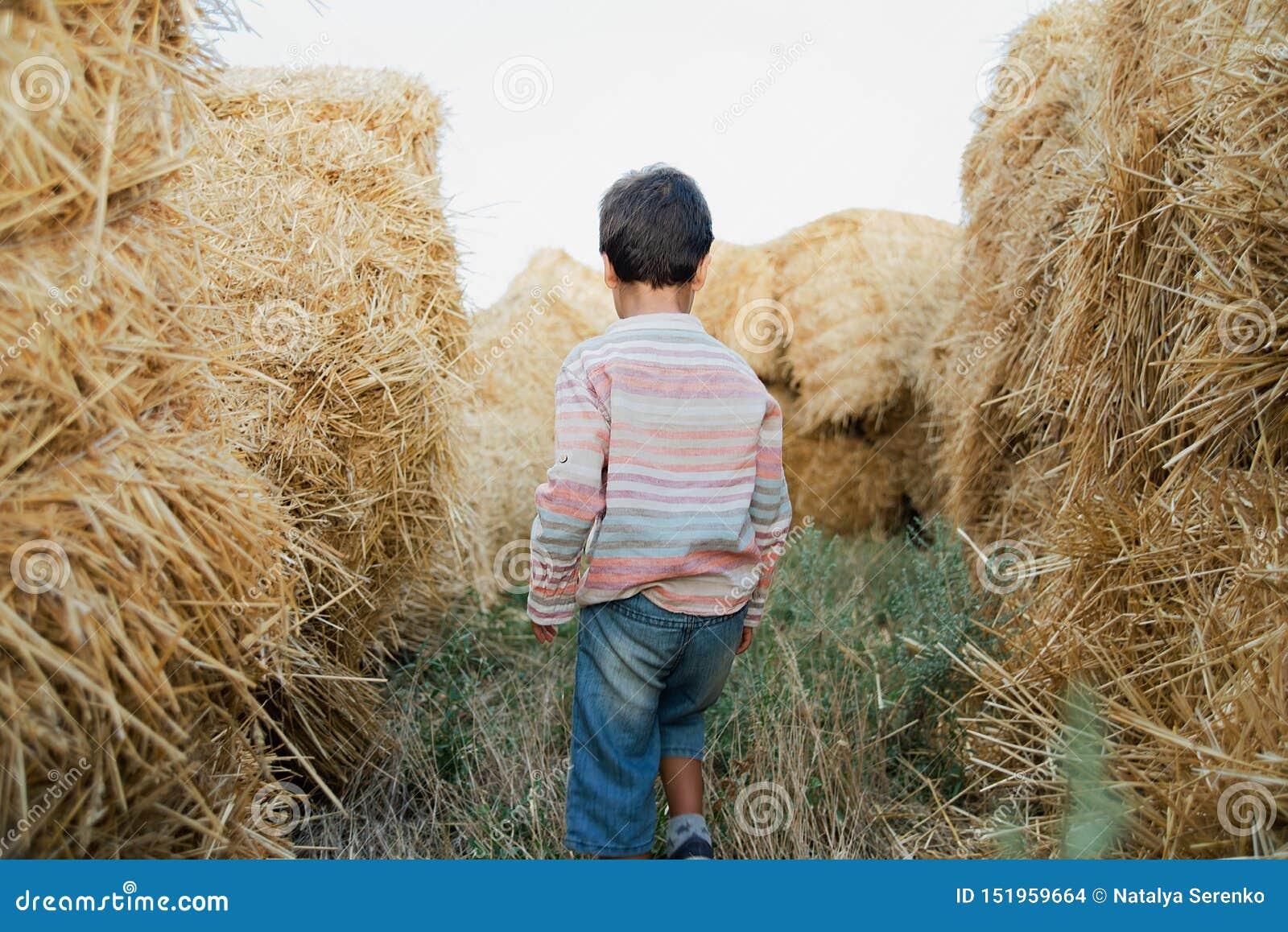 Chłopiec blisko siano beli w polu Dziecko na rolnej ziemi Pszeniczny żółty złoty żniwo w jesieni Wie? naturalny krajobraz